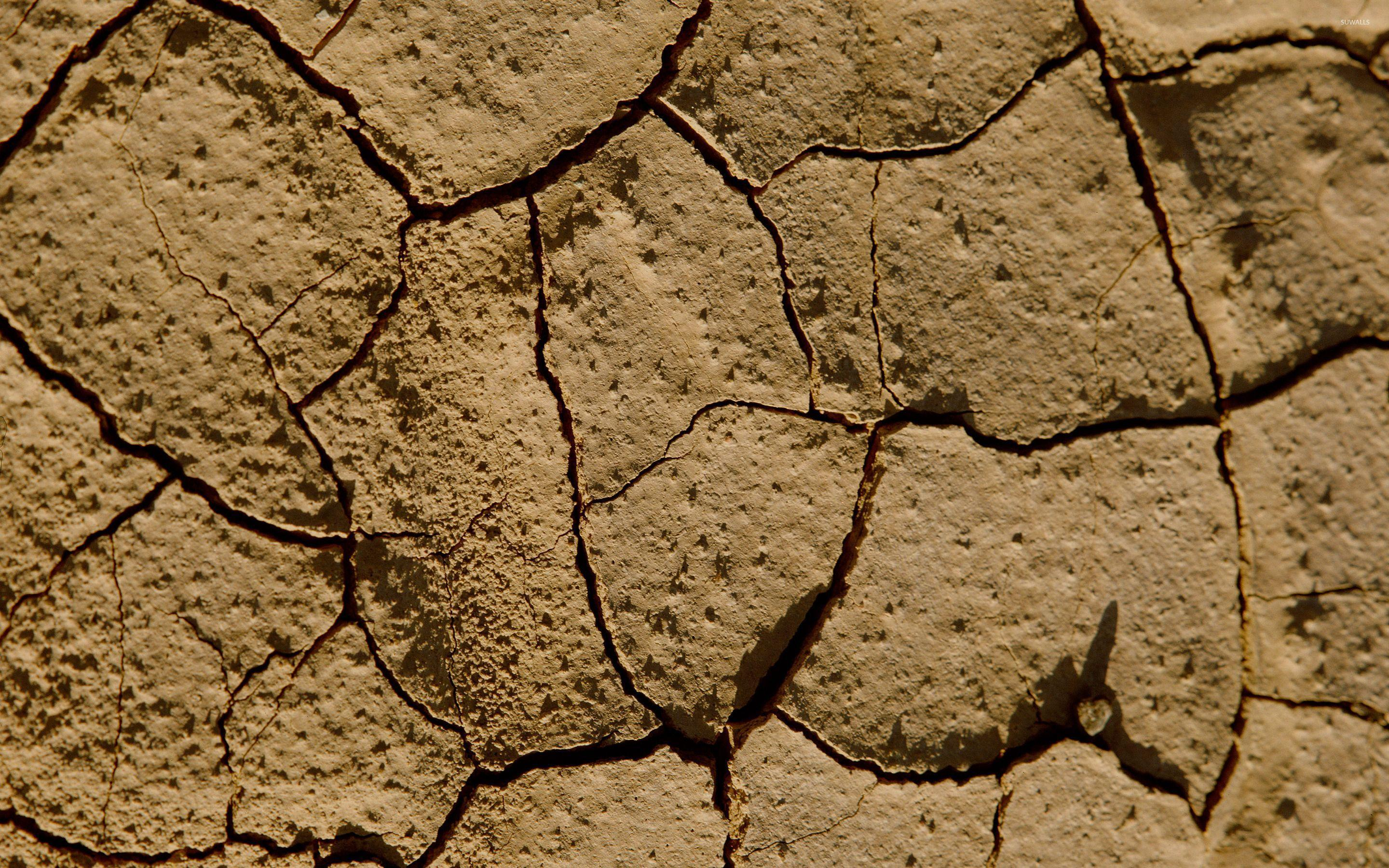 Cracked mud wallpapers