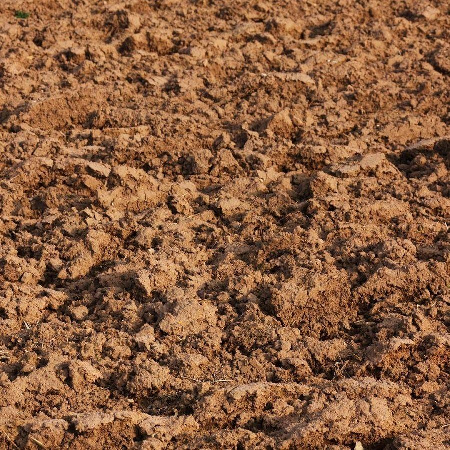 Mud Wallpapers