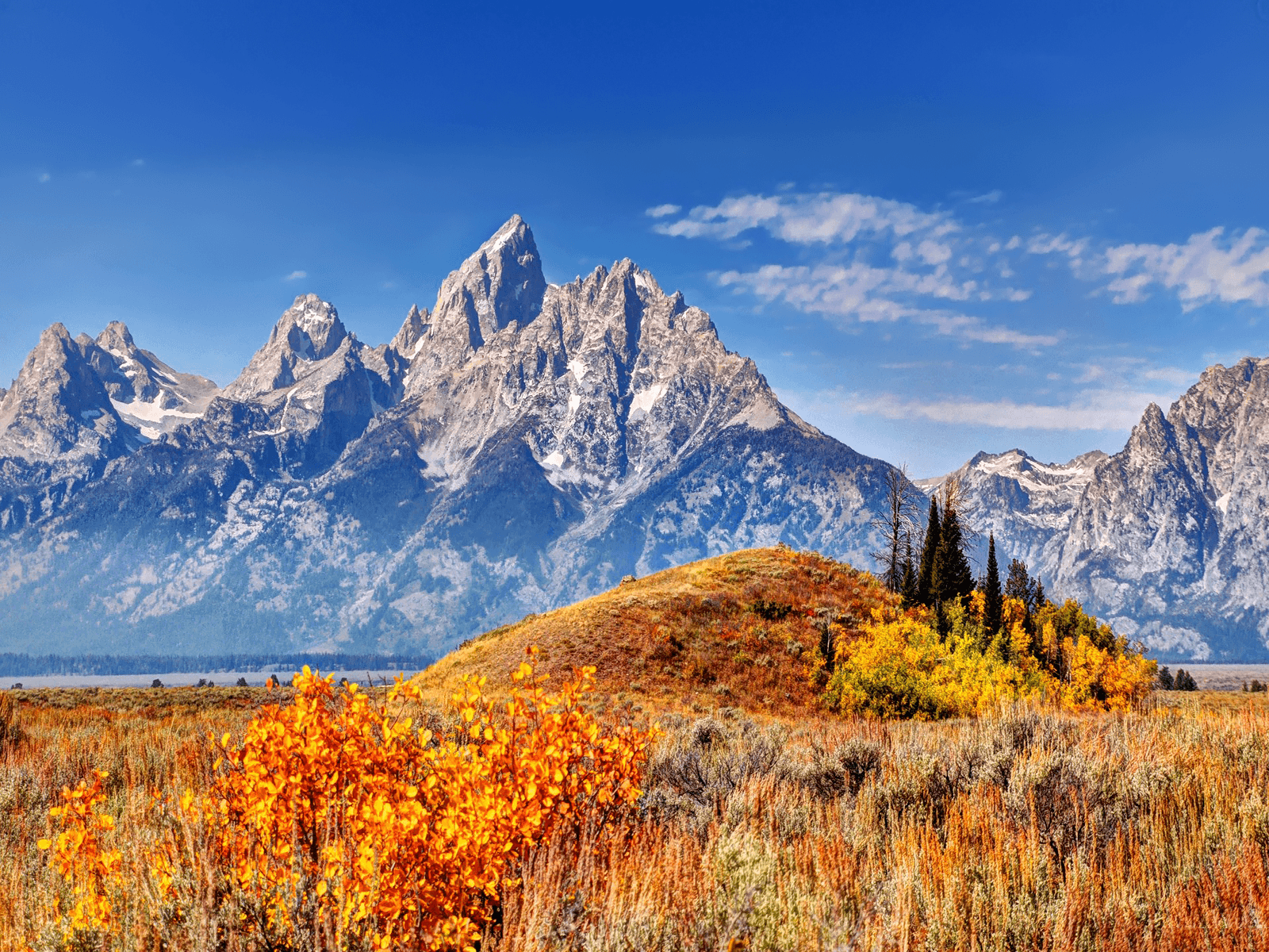 Tundra Wallpapers Wallpaper Cave
