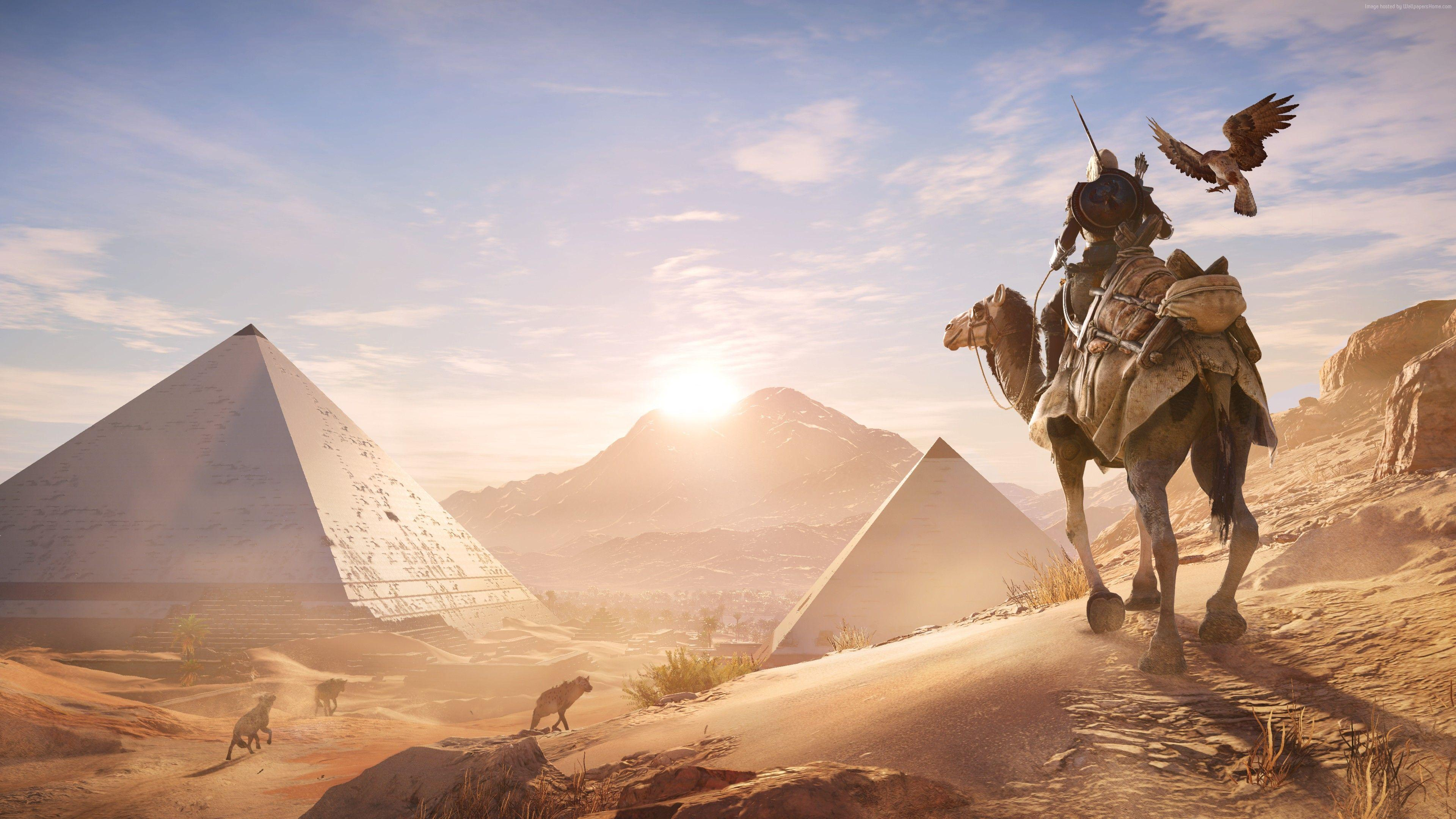 Wallpaper Assassin S Creed Origins Eagle Ubisoft Games