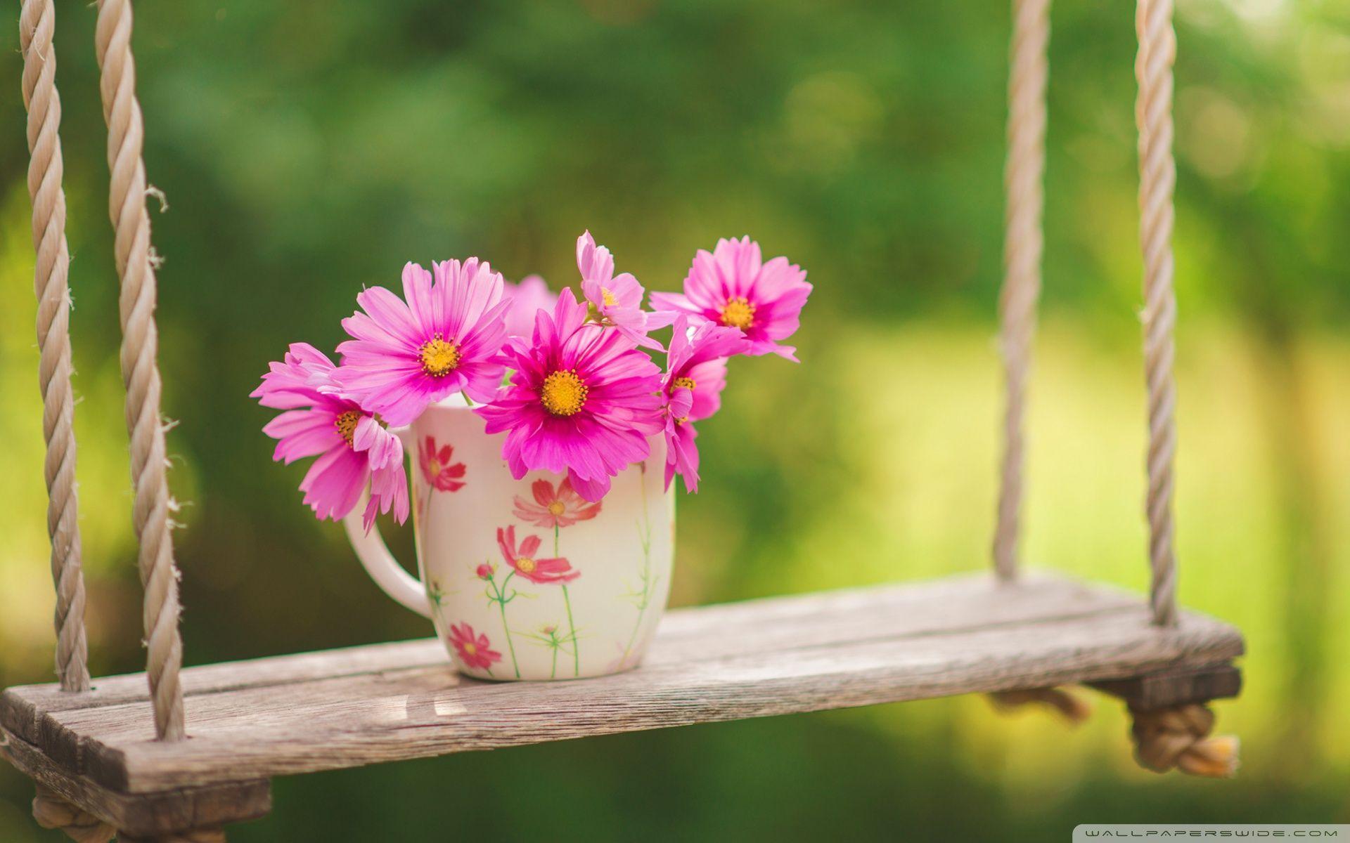 Swing And Flowers HD desktop wallpaper : Widescreen : High ...