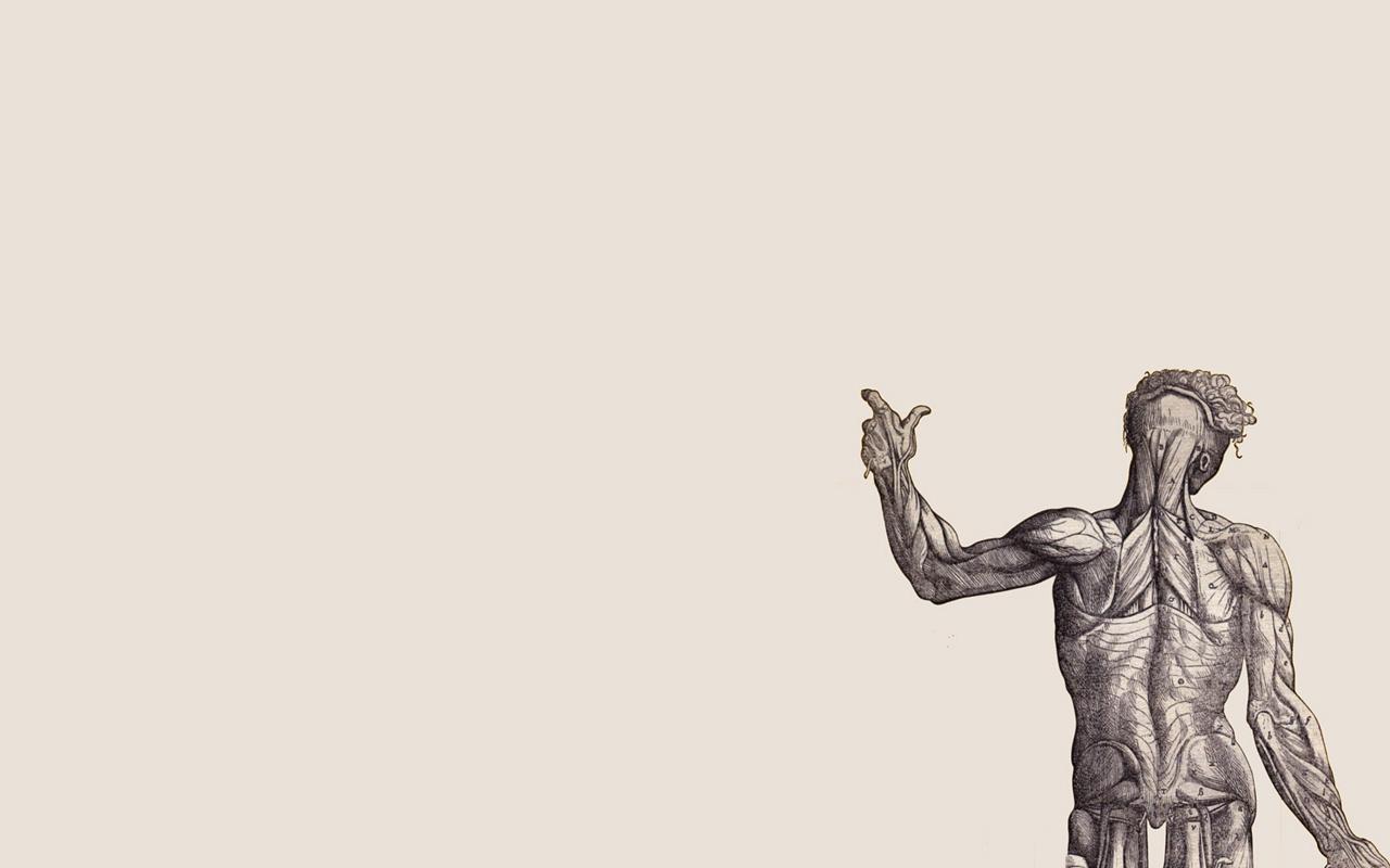Human Body Wallpapers - Wallpaper Cave