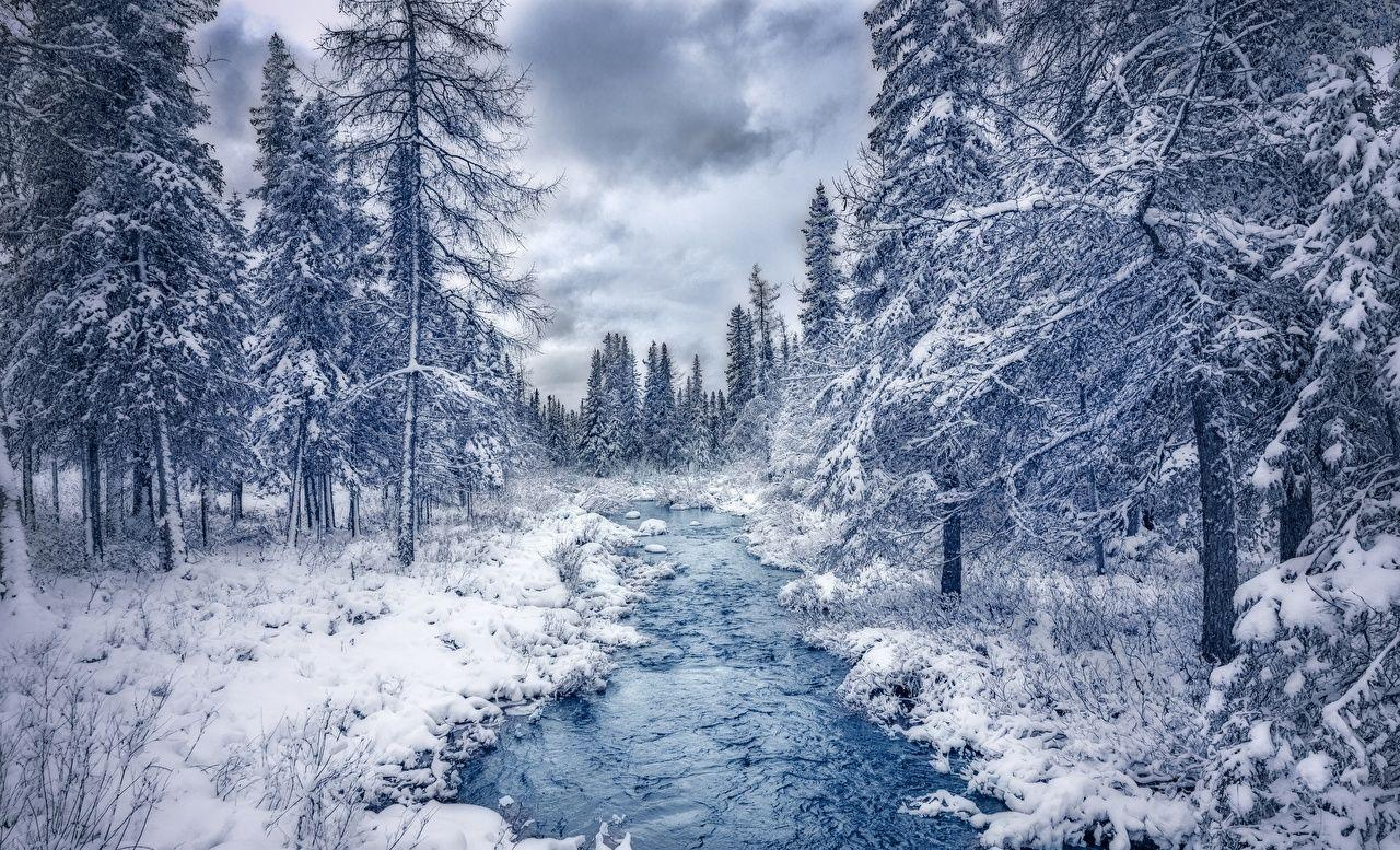 Canada Quebec Nature Stream Winter Forests Trees