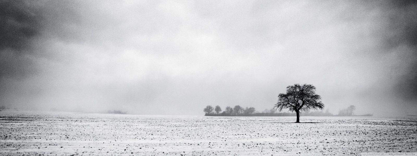Empty Field, Winter HD desktop wallpaper : High Definition ...