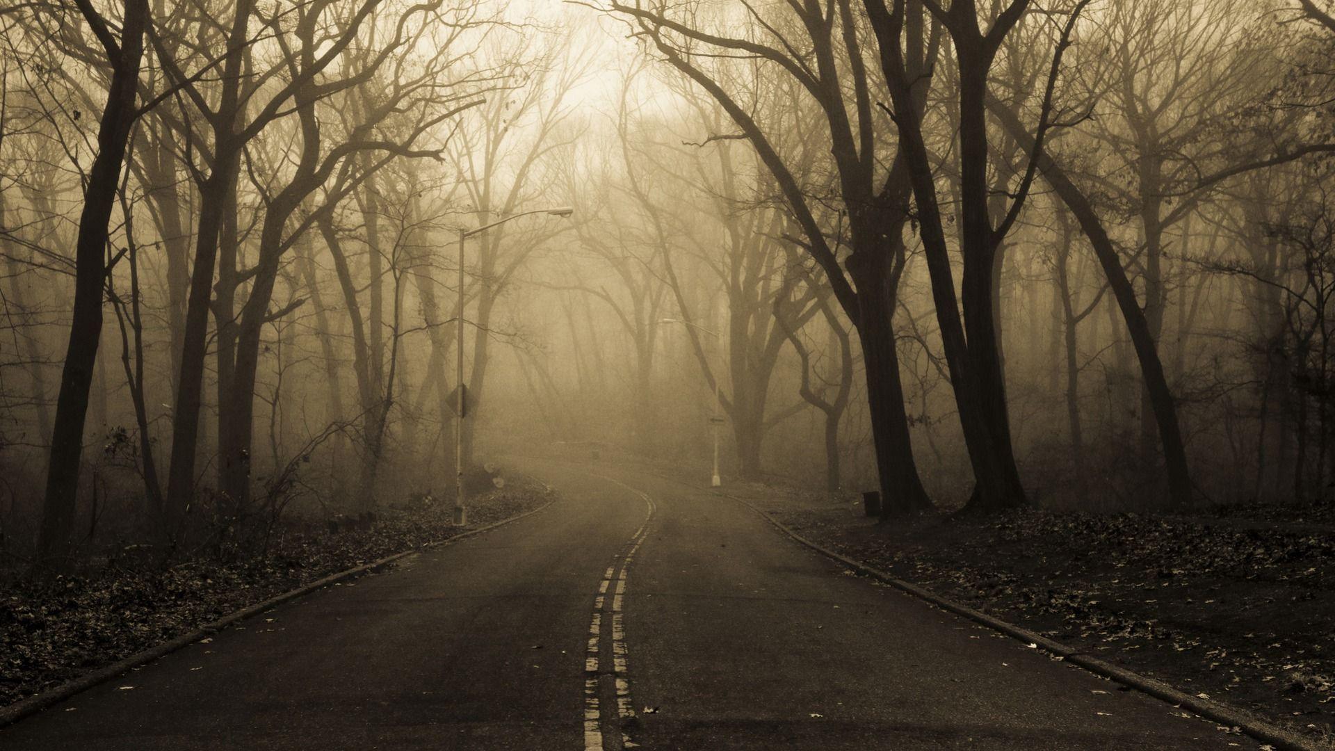 Empty Road HD Wallpaper | 1920x1080 | ID:40451