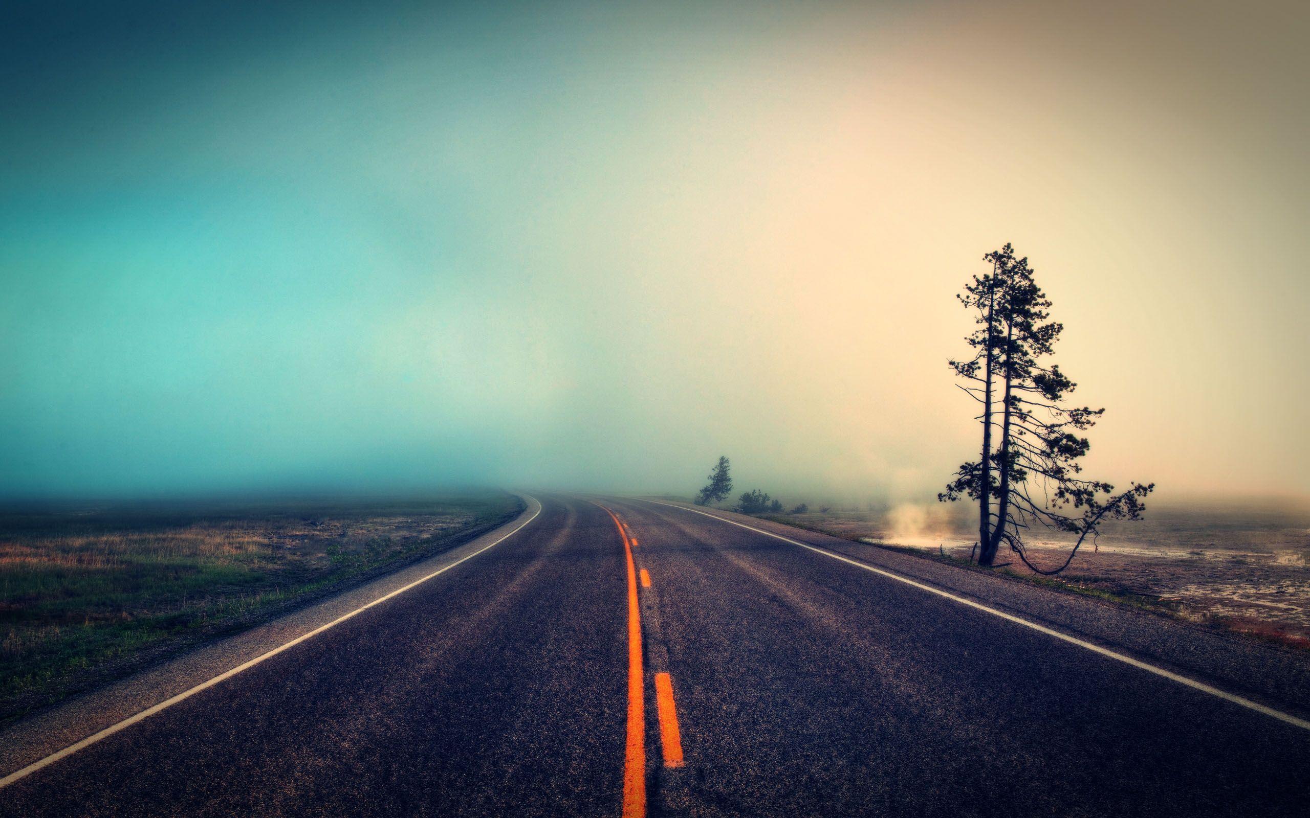 Empty Road Wallpaper | 2560x1600 | ID:22131