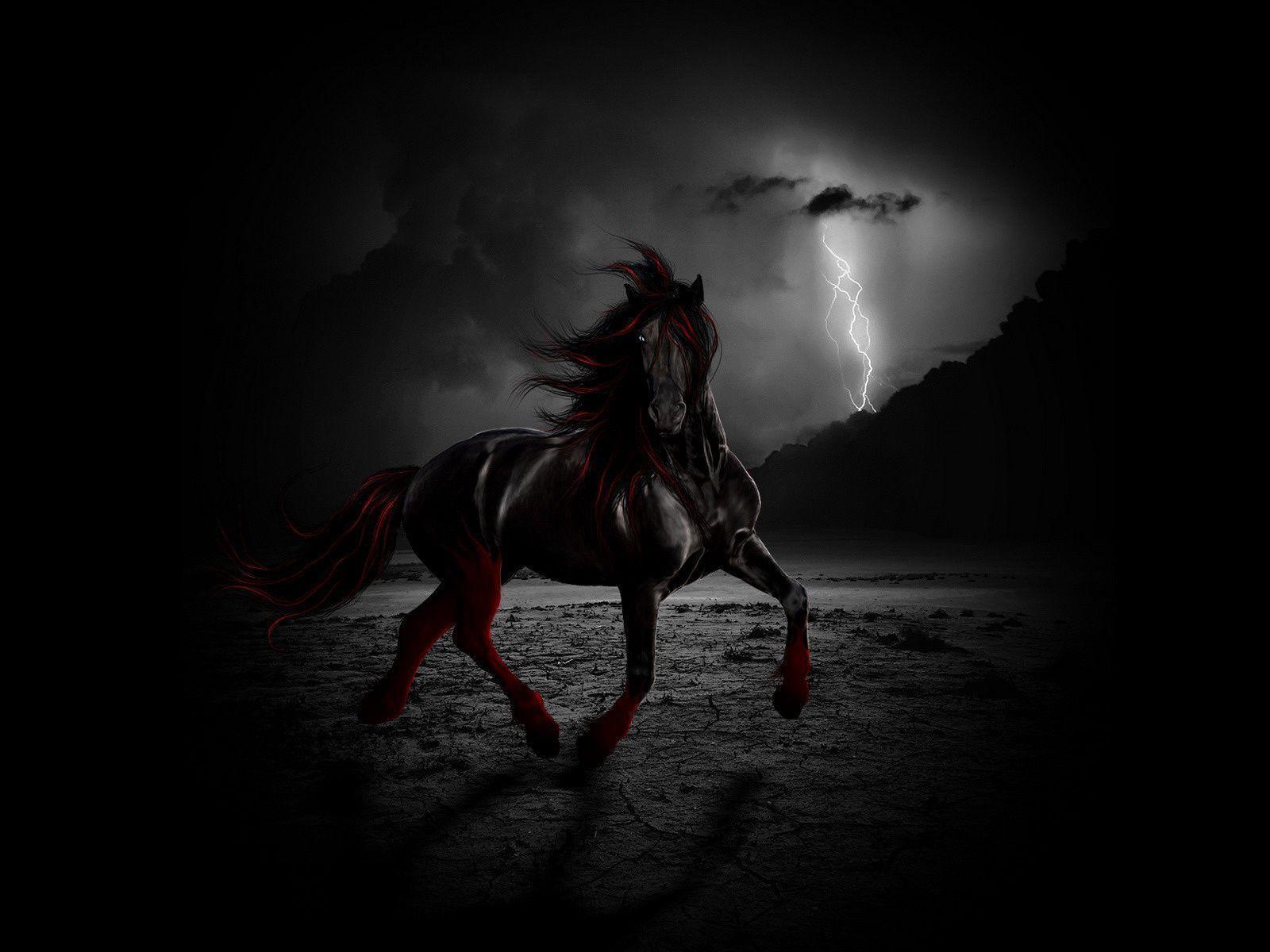 Black Horse Wallpapers - Wallpaper Cave - photo#18
