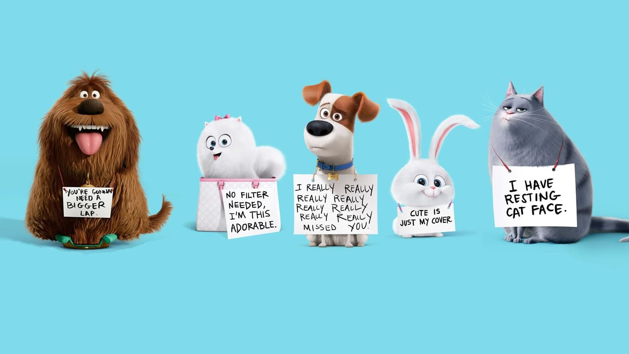 The Secret Life Of Pets Wallpapers Wallpaper Cave