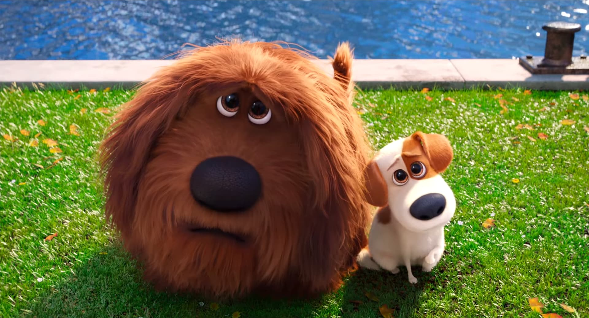 The Secret Life Of Pets Wallpaper: The Secret Life Of Pets Wallpapers