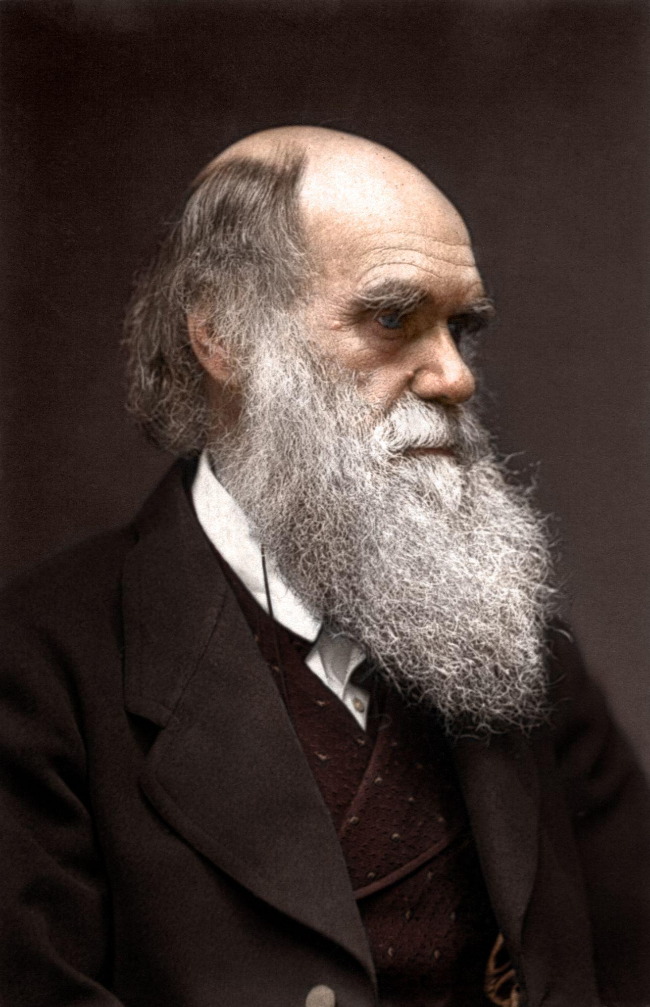 discuss the importance of charles darwin