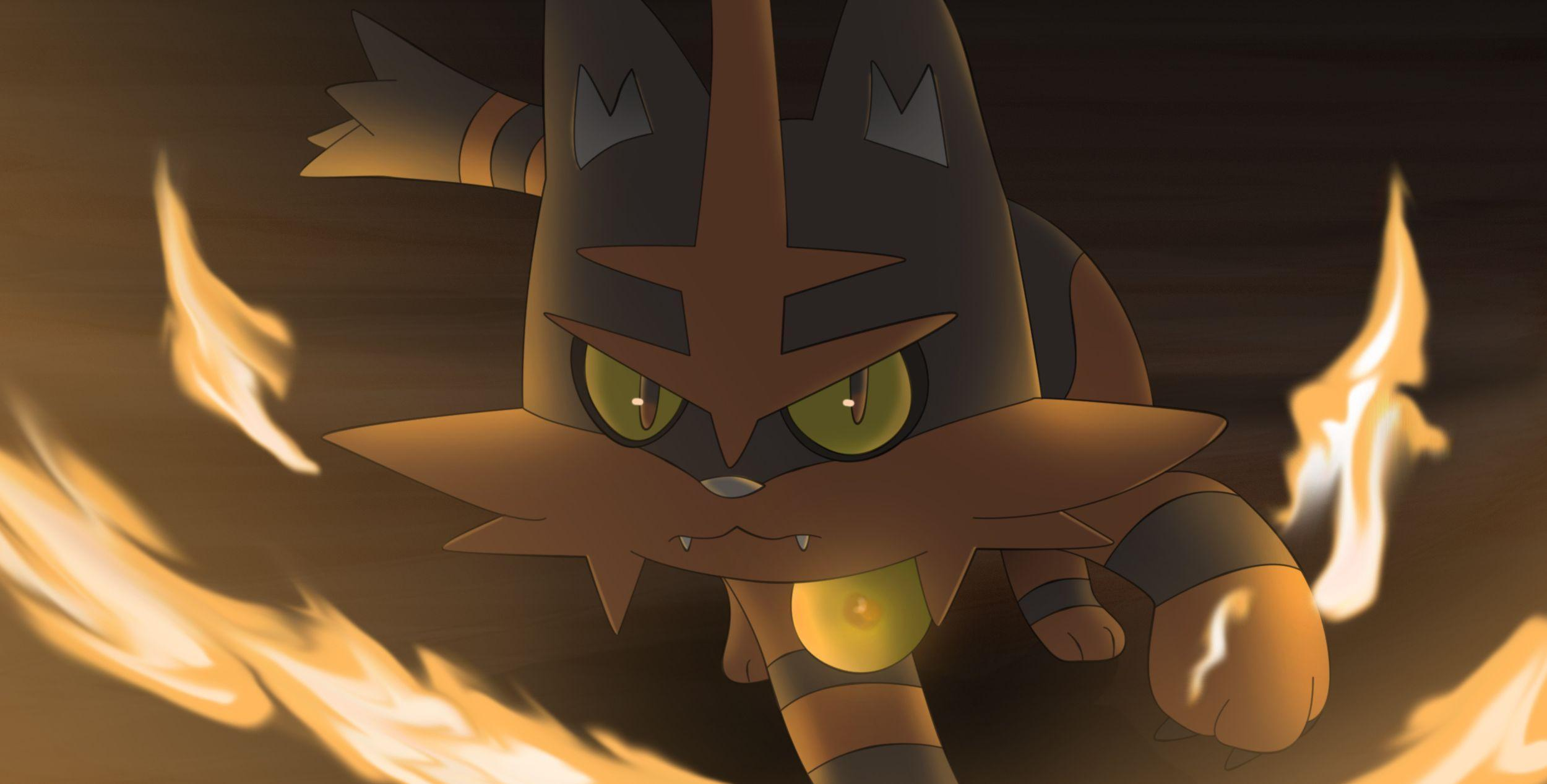 Litten's evolution Torracat! HD Wallpaper | Background Image ...