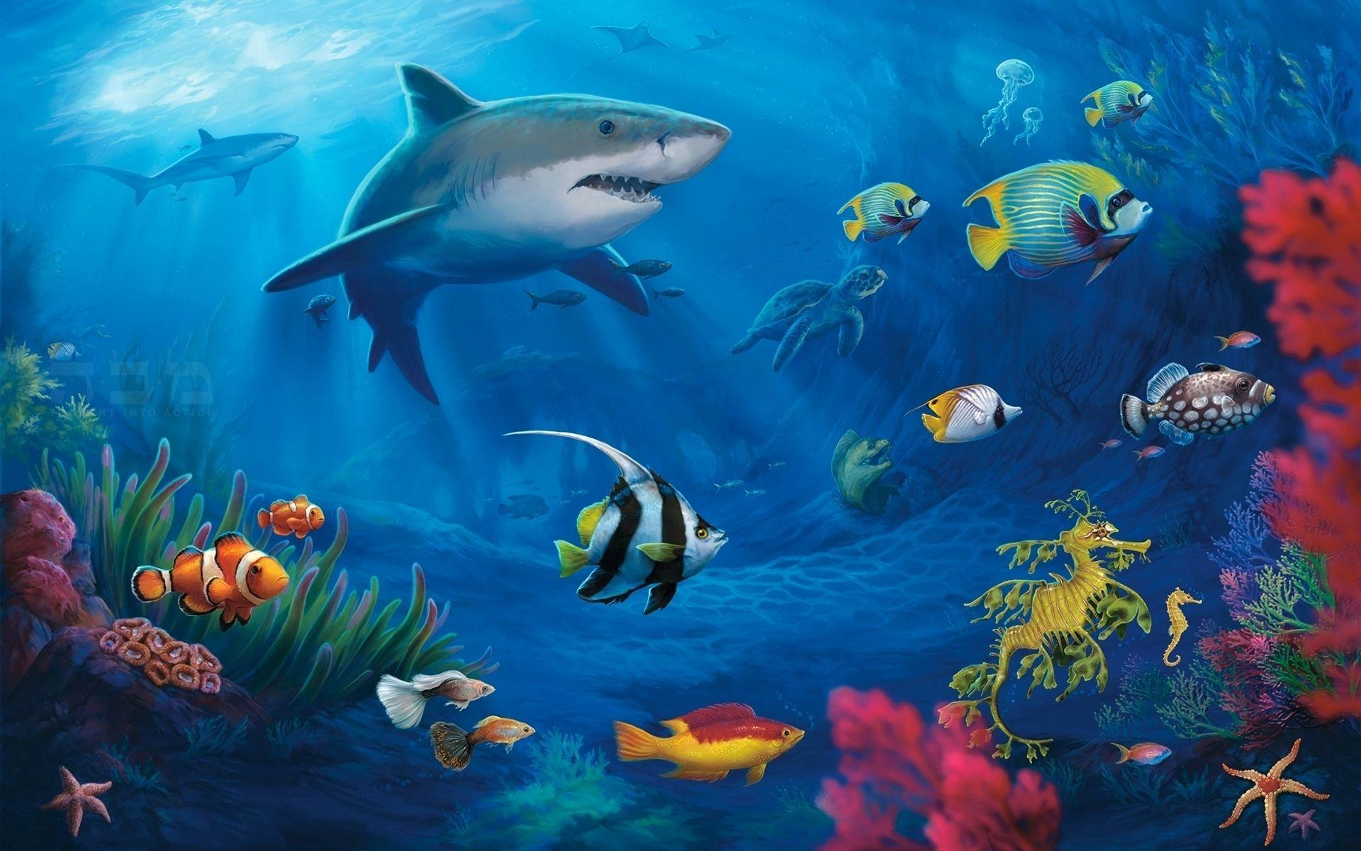 Underwater World Wallpapers HD Pictures – One HD Wallpapers