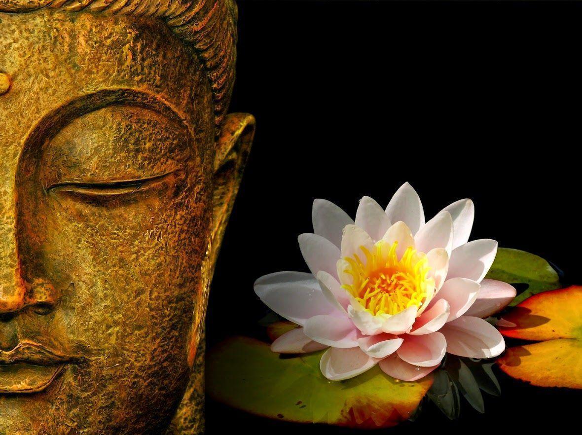 Buddha Hd Wallpapers Wallpaper Cave