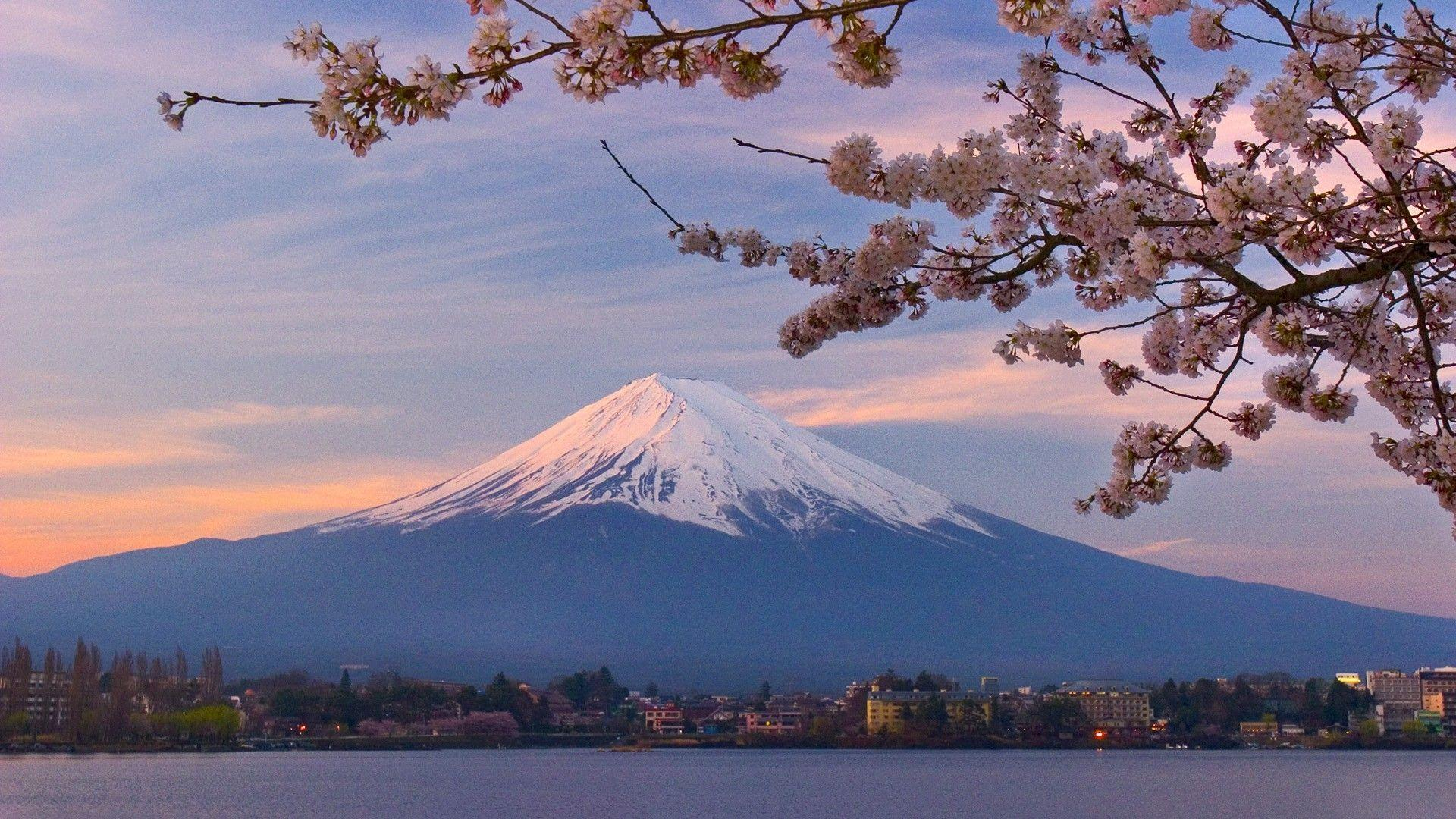 Mount Fuji Hd Wallpapers Wallpaper Cave