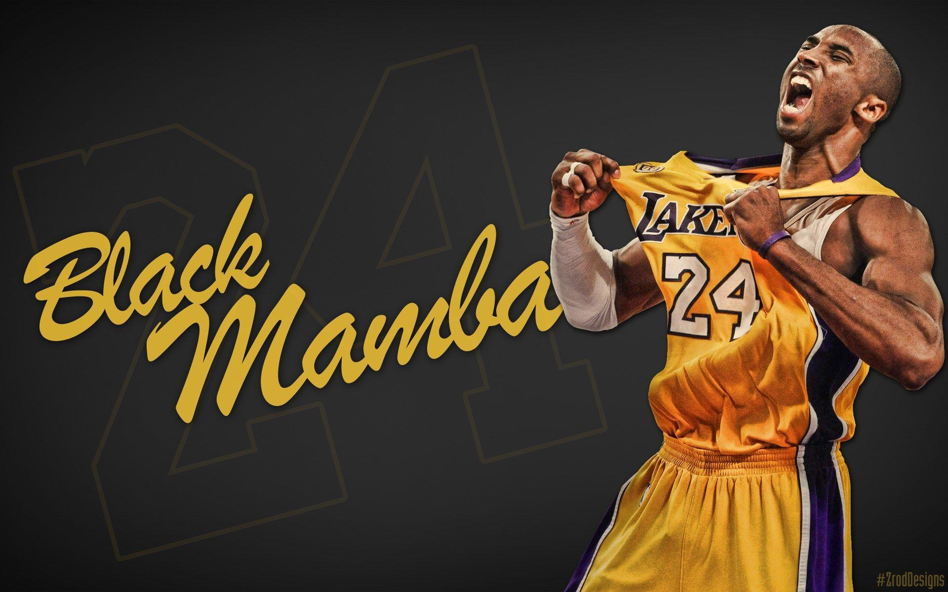 mamba wallpapers / reptiles and amphibians hd backgrounds 1680×1050