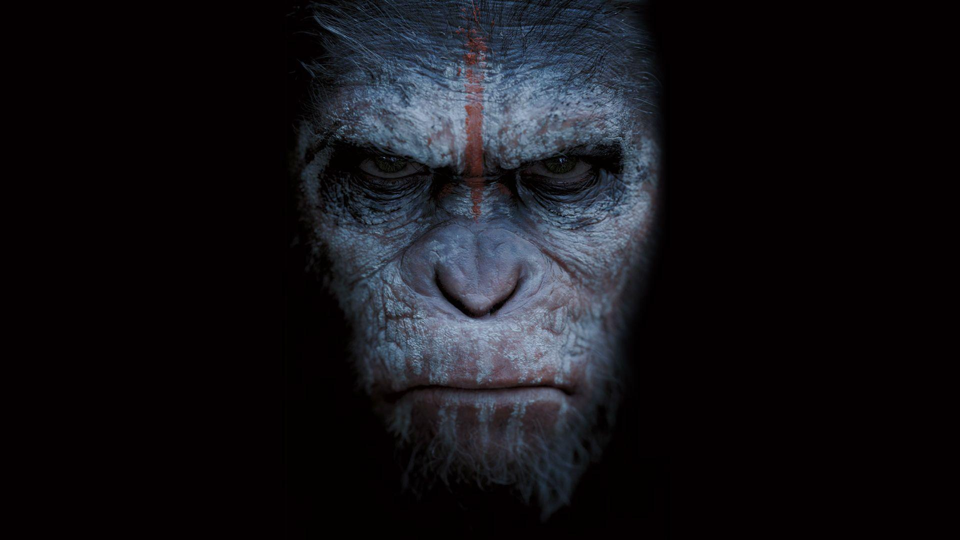 Planet Of The Apes Wallpaper: Caesar Planet Of The Apes Wallpapers