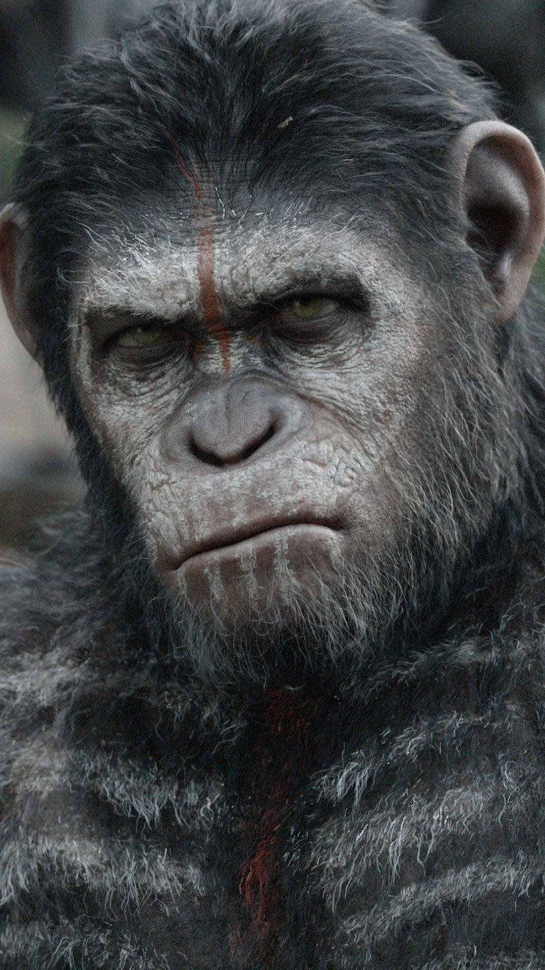 Planet Of The Apes Wallpapers Wallpaper Cave