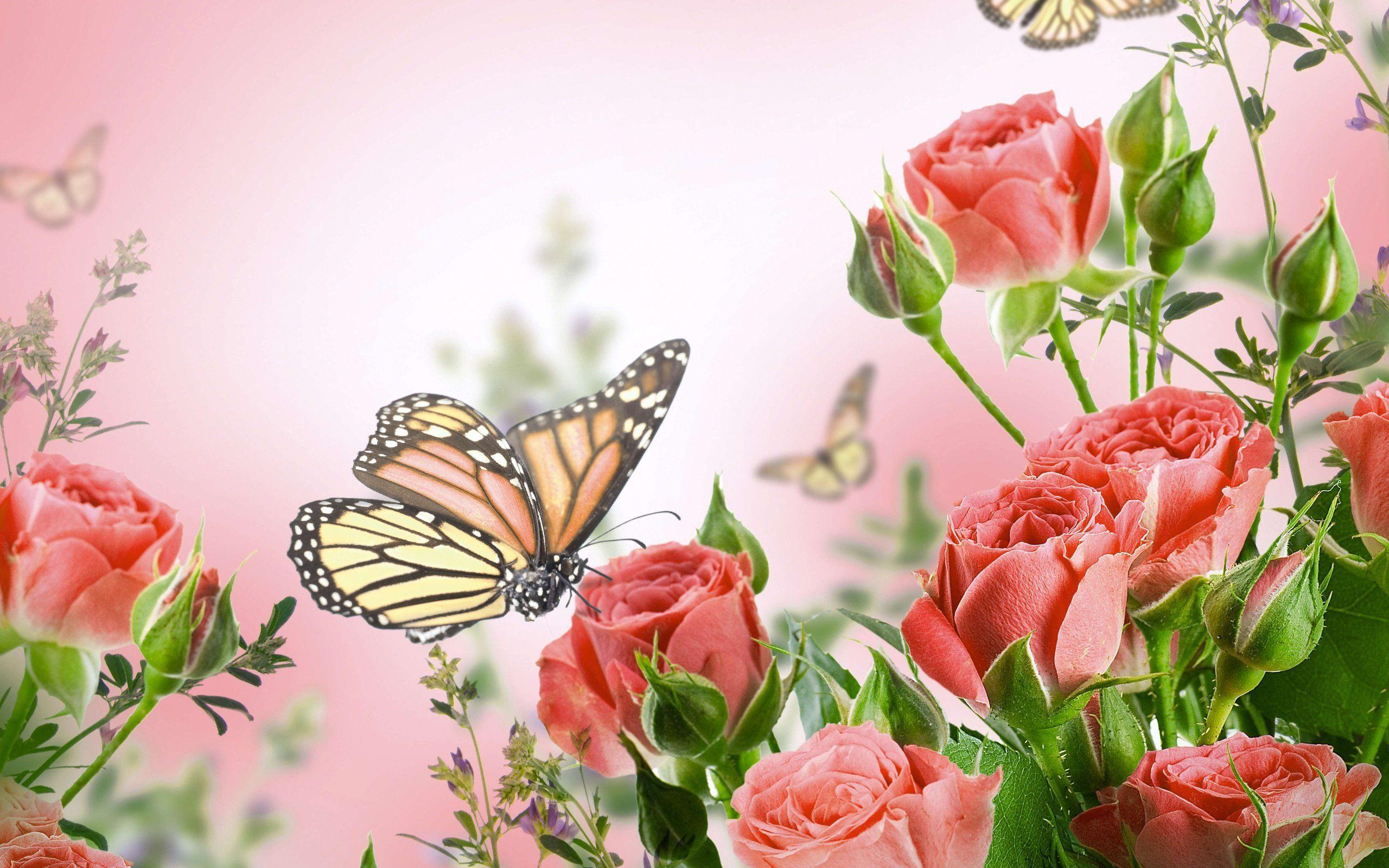 butterflies and flowers wallpapers - wallpaper cave