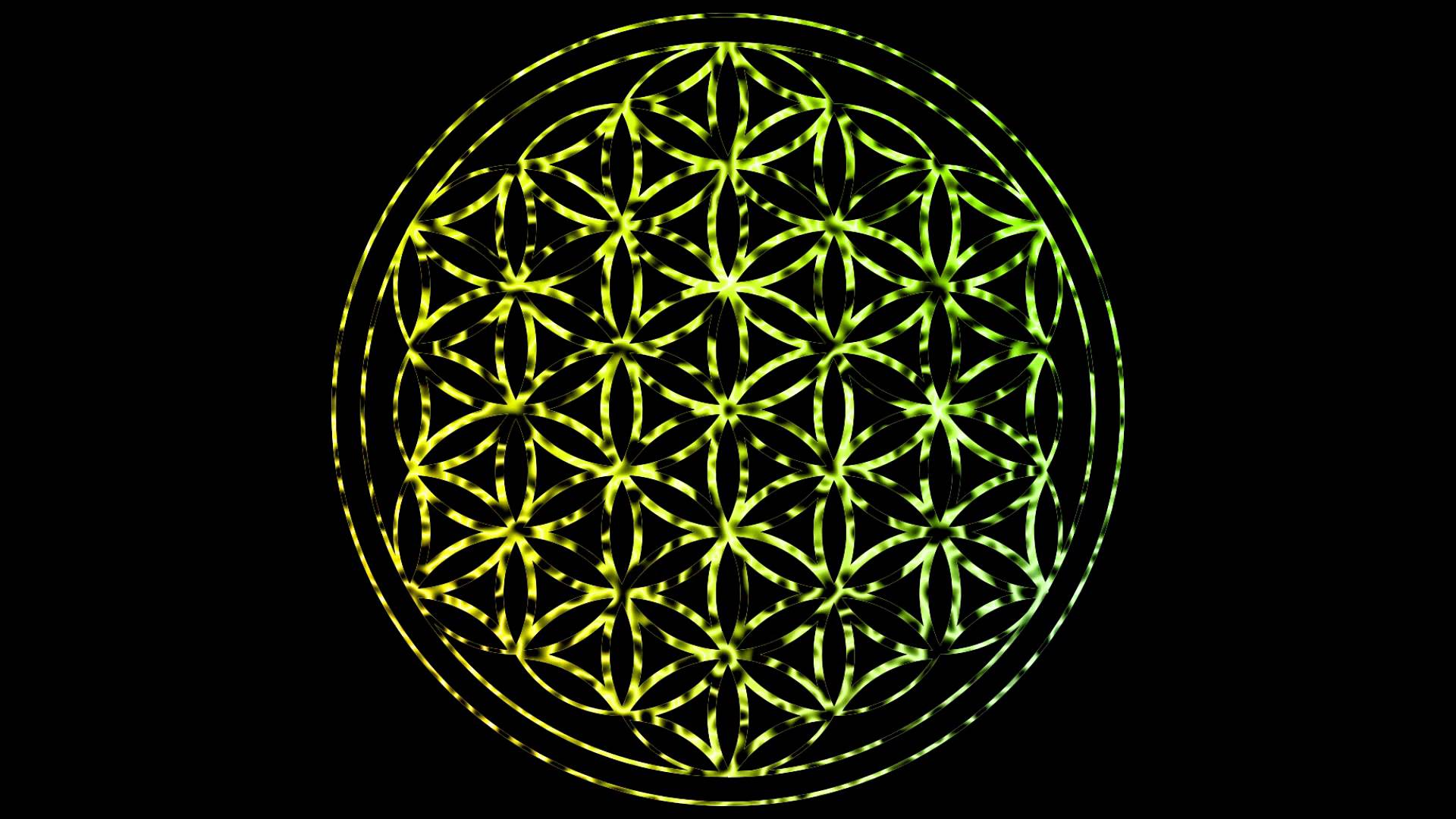 Sacred Geometry Flower Of Life Wallpaper
