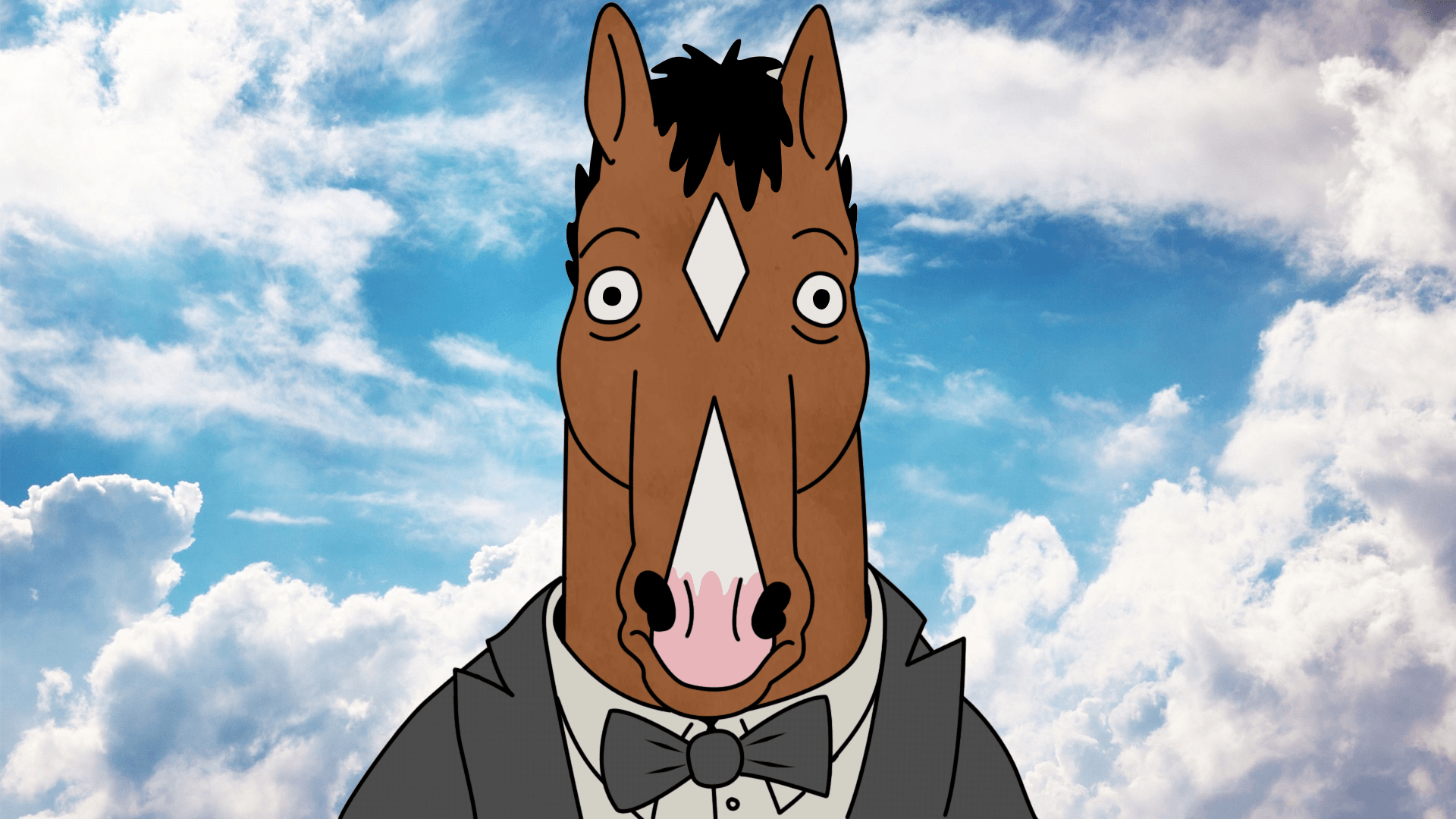 BoJack Horseman, Cartoon Wallpapers HD / Desktop and Mobile