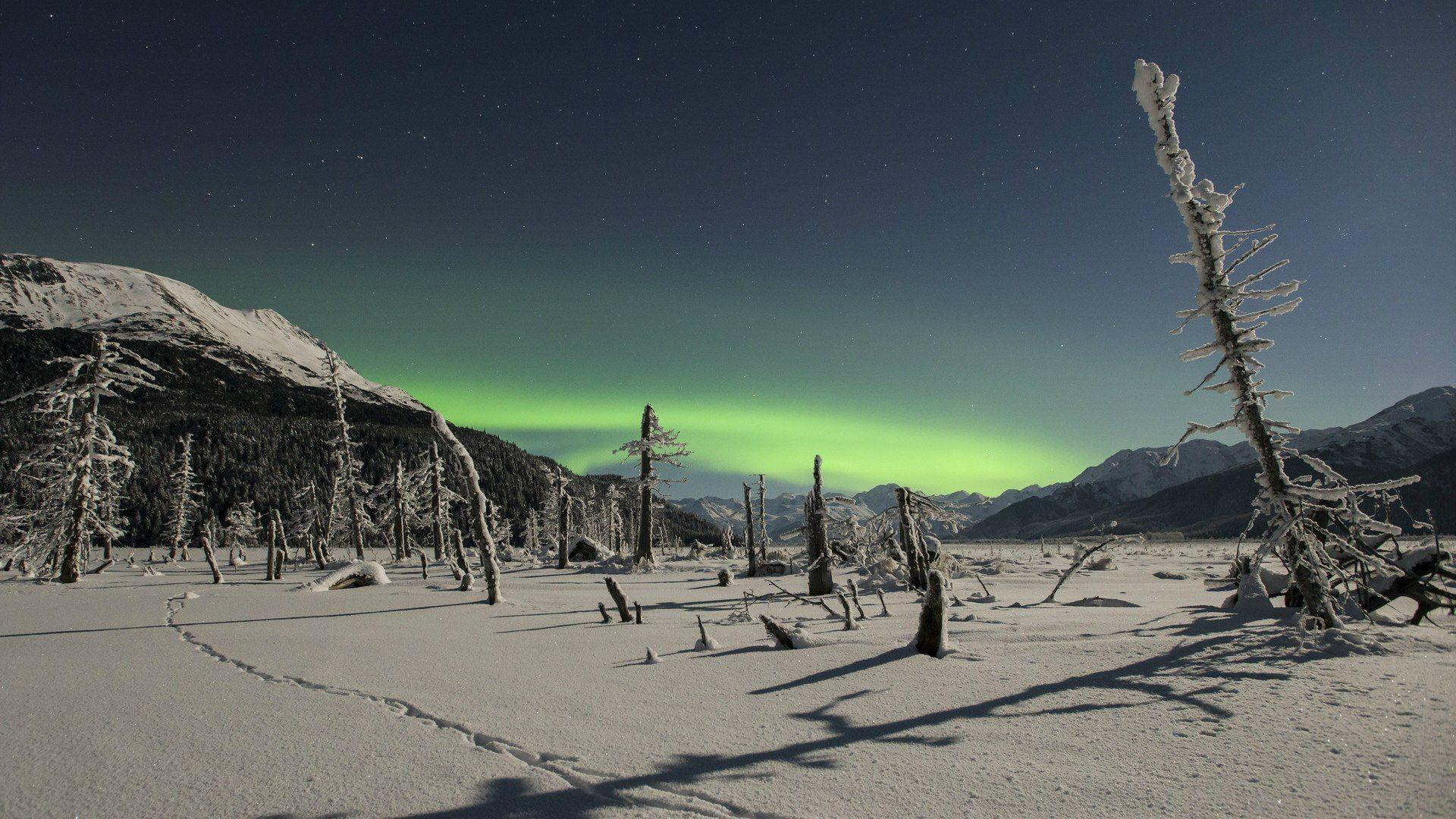 Northern lights over snowy wilderness wallpapers and images ...