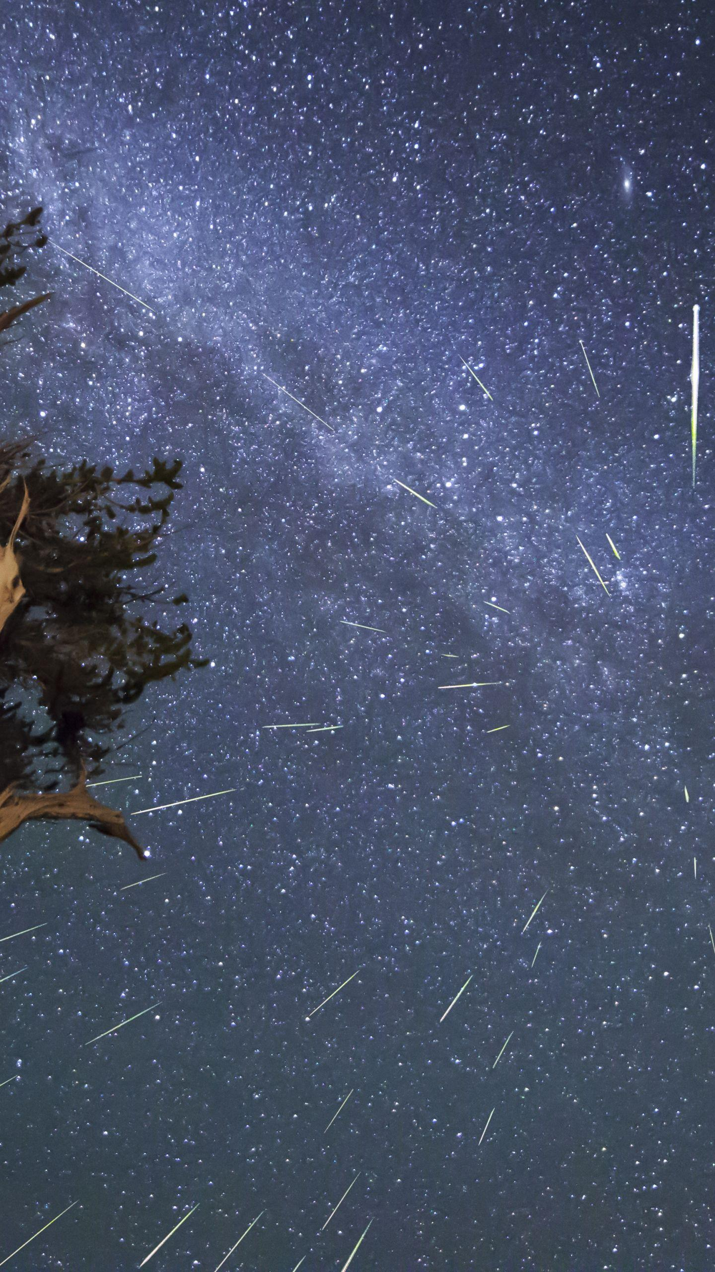 Download Wallpaper 1440x2560 Meteors, Perseids, Bristlecone ...