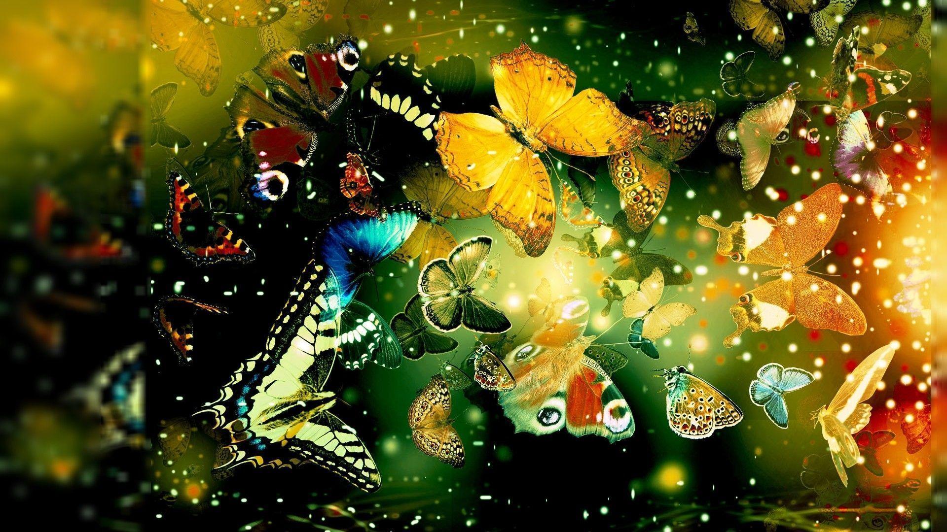 Butterflies Wallpapers Free Download