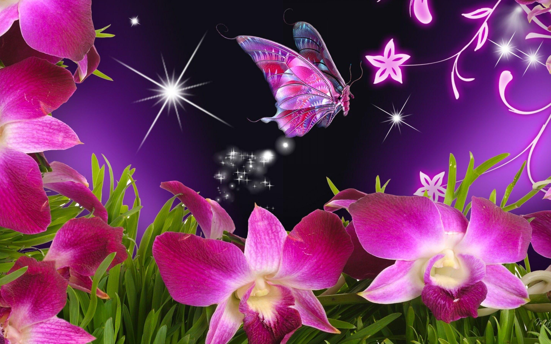 Beautiful Butterflies New Top Wallpaper 4057 Hd Wallpapers ...