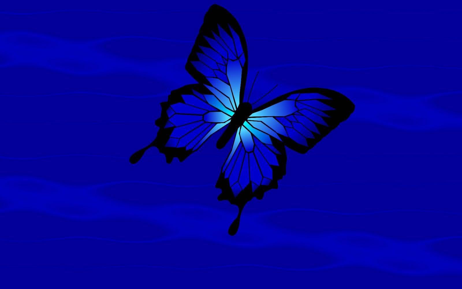 Blue Butterfly HD Wallpaper - WallpaperSafari