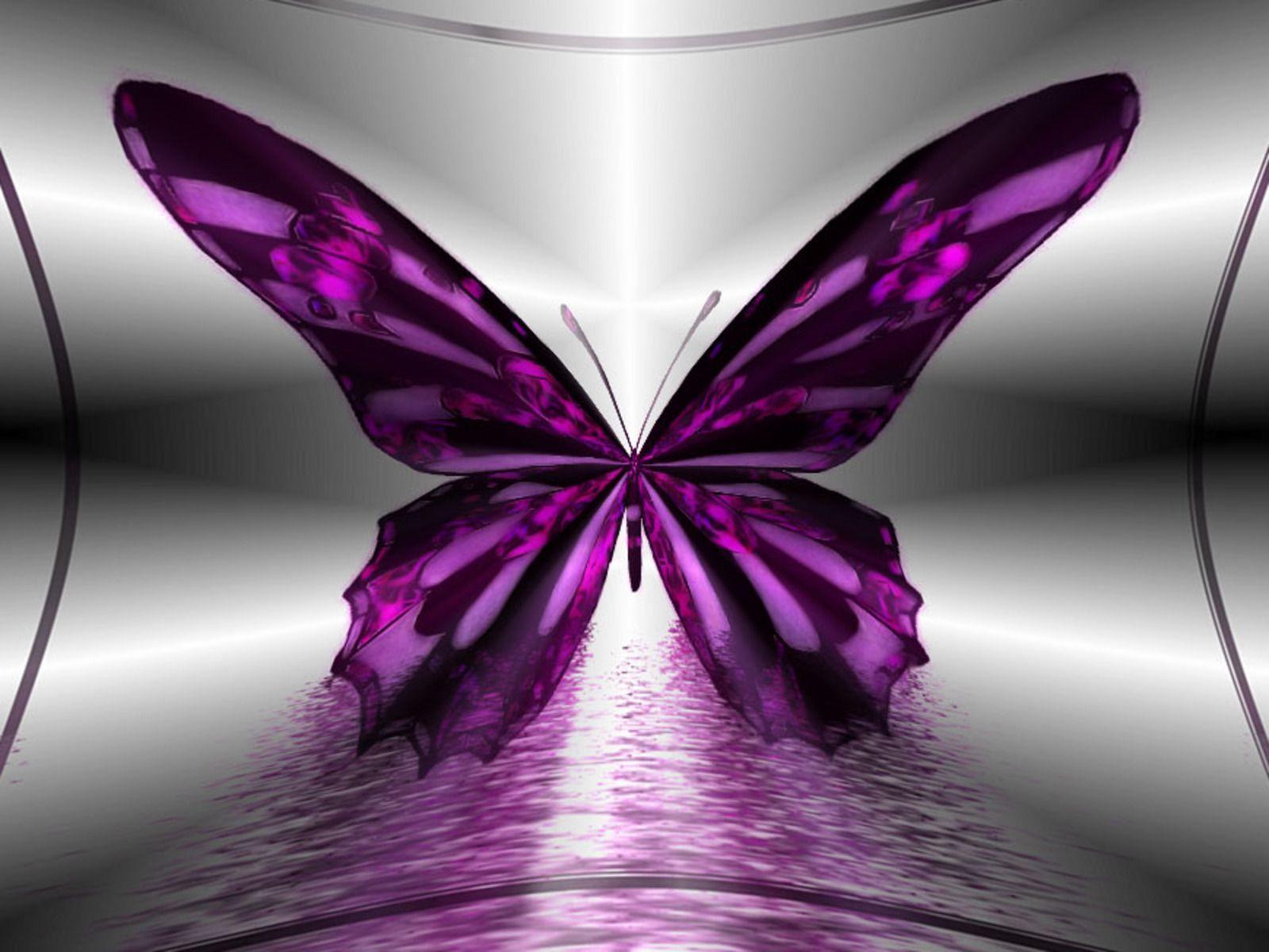 Butterfly Wallpaper Hd - WallpaperSafari
