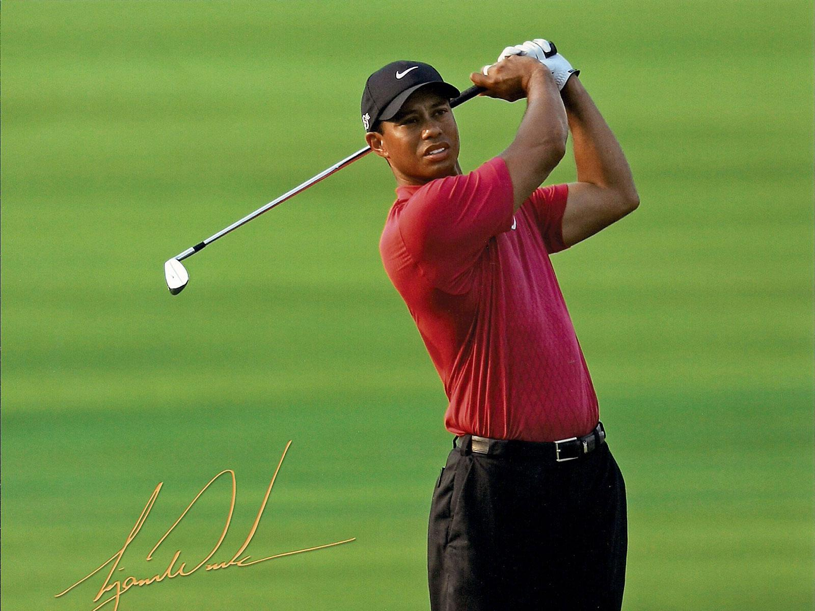 Tiger Woods Wallpaper 1600x1200 42076