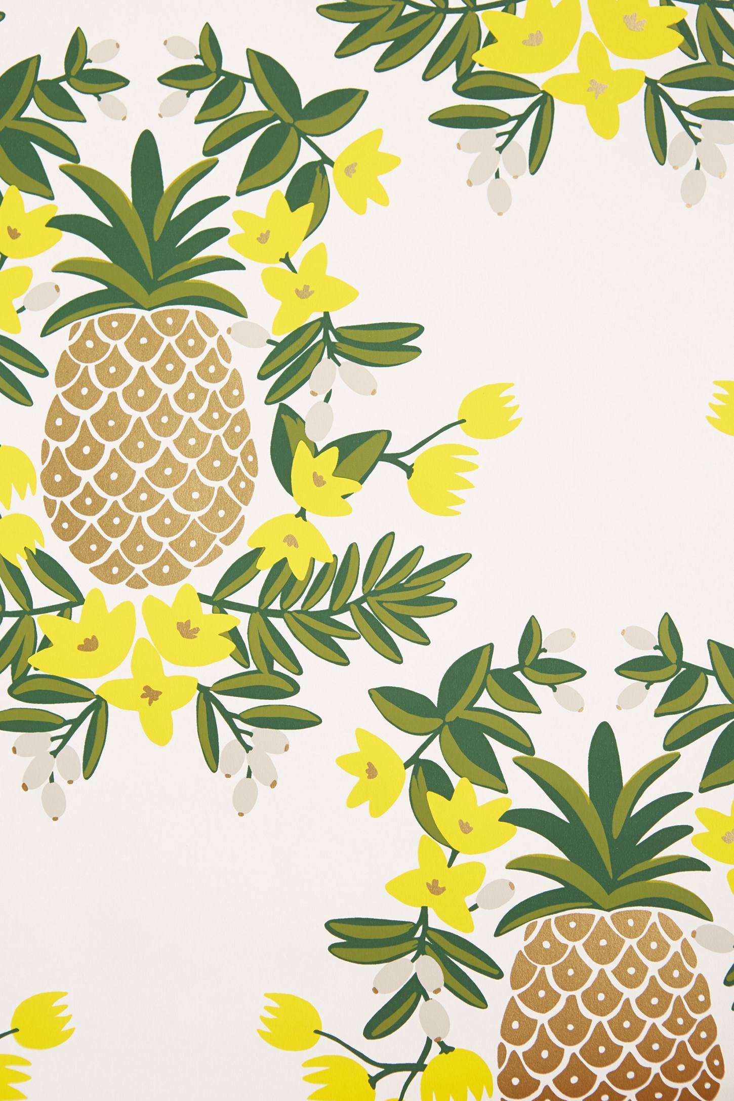 pineapples wallpapers wallpaper cave