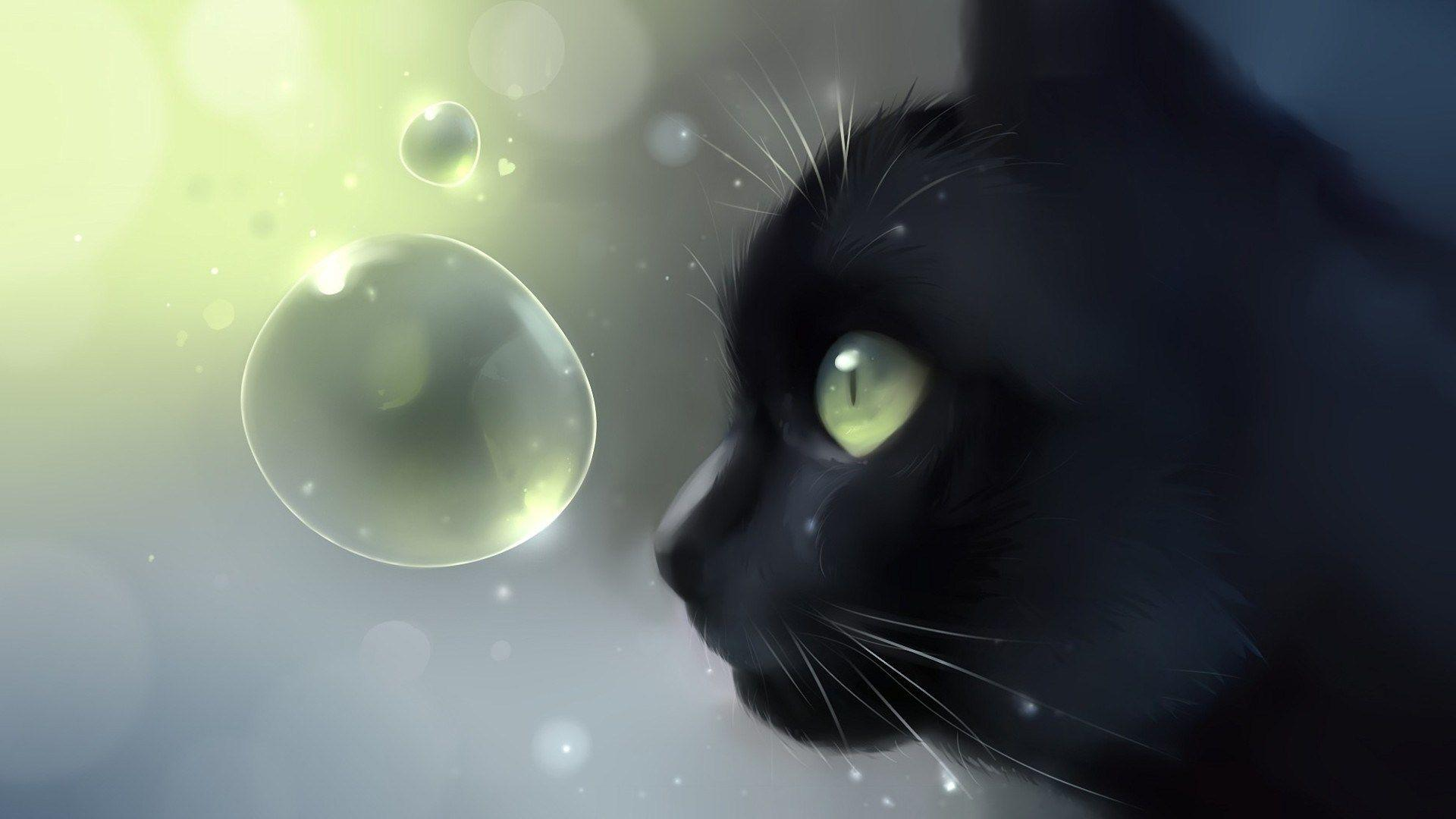 anime cat wallpapers wallpaper cave