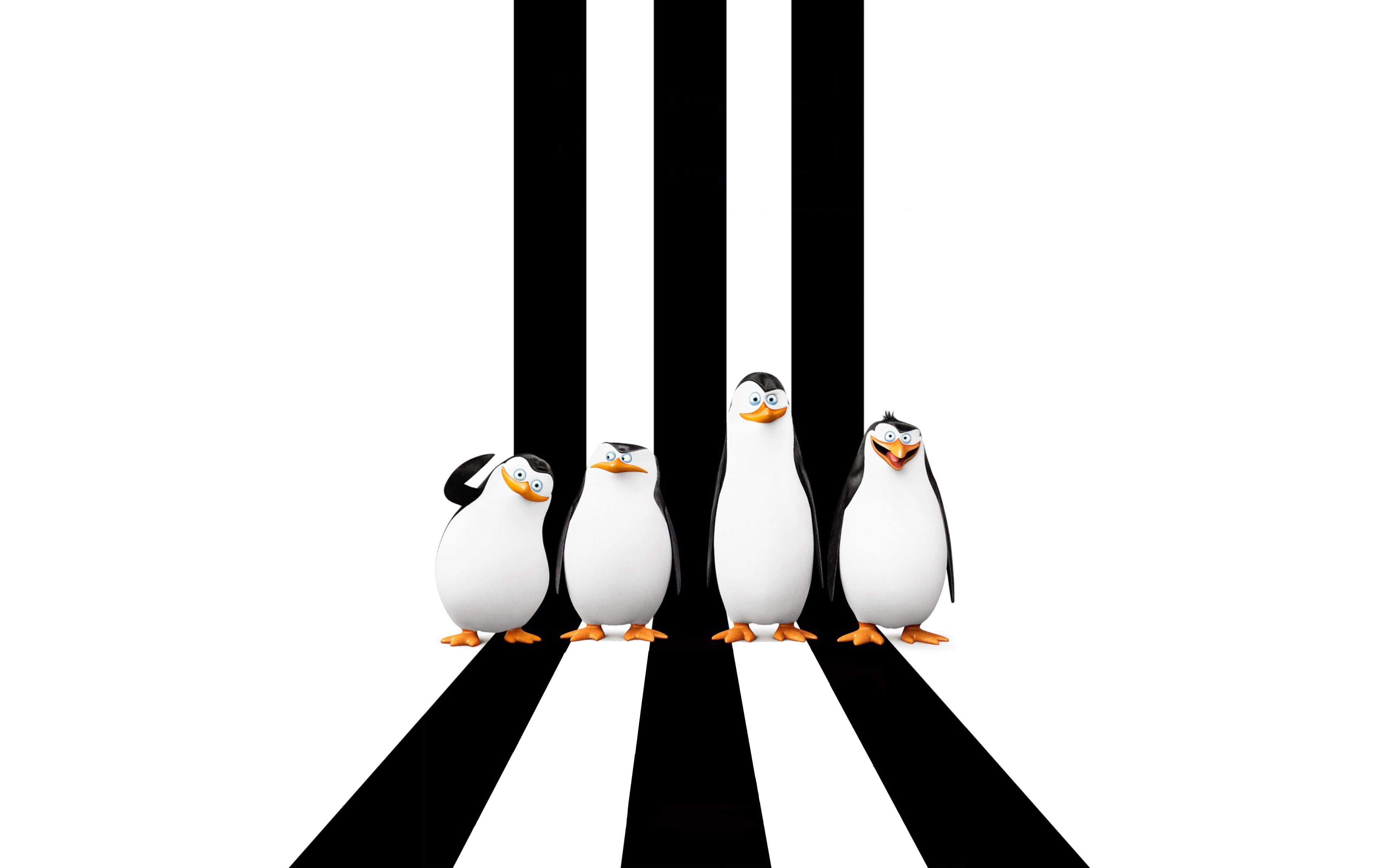 penguins of madagascar wallpapers - wallpaper cave