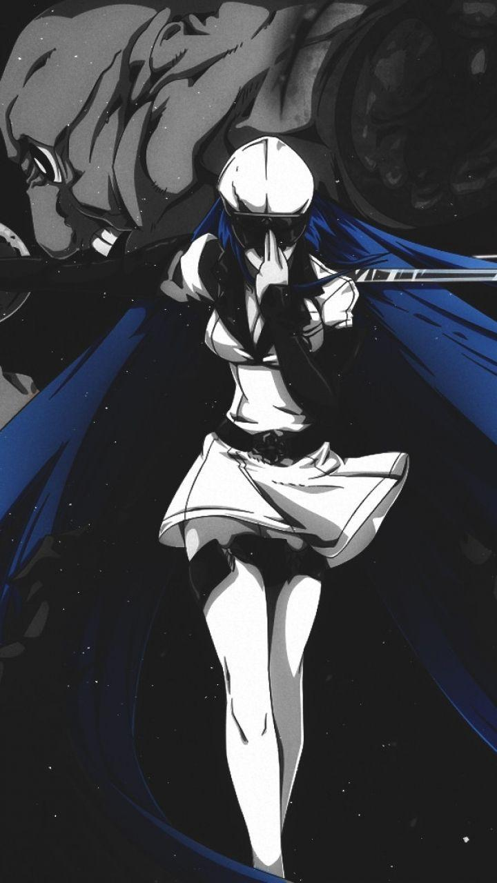Unduh 8200 Koleksi Wallpaper Hd Esdeath HD Terbaru