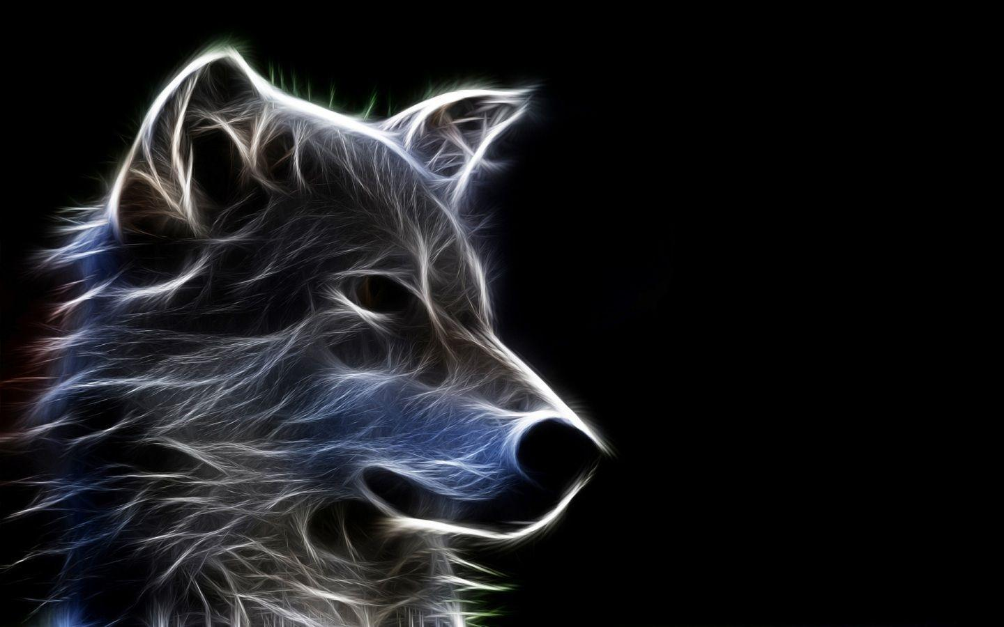 Cool Animal Images HD Wallpaper Light Shadow Animals