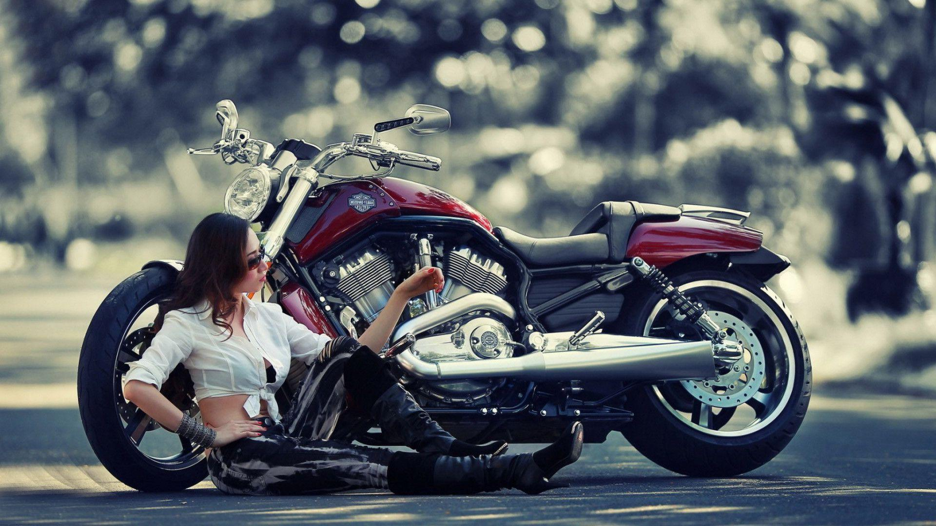 Wallpaper harley davidson impremedia harley davidson bikes wallpapers voltagebd Choice Image