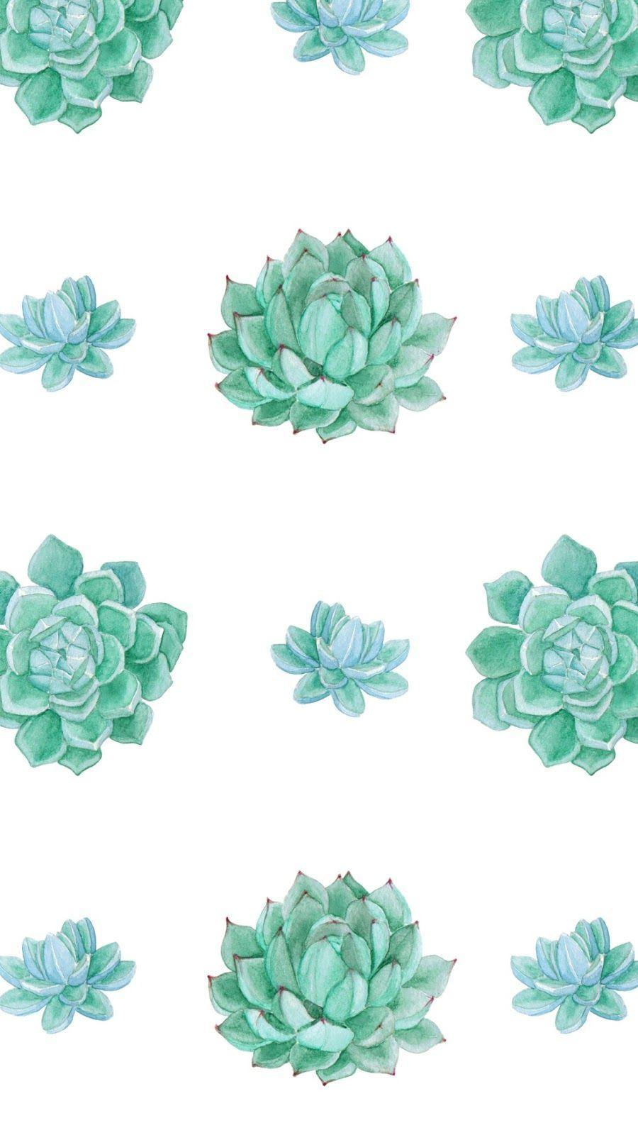 Succulent Wallpapers Wallpaper Cave