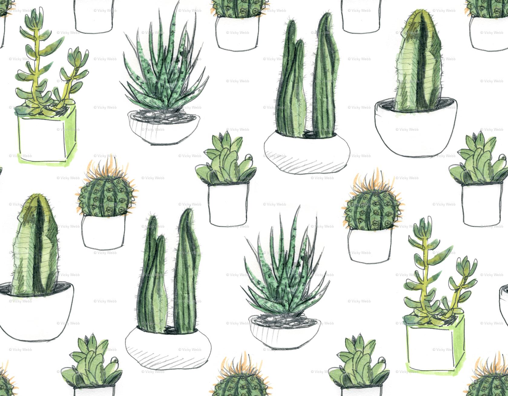 Succulent Wallpapers Wallpaper Cave