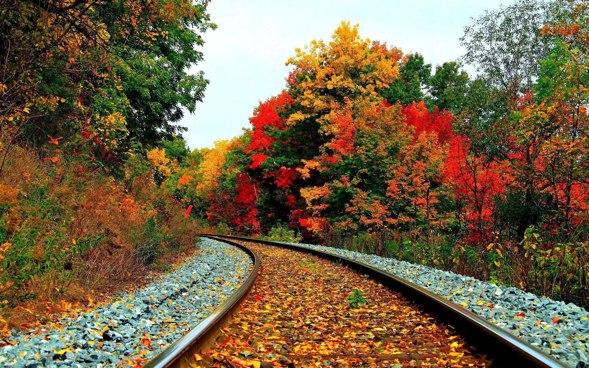 Railway Autumn Wallpapers