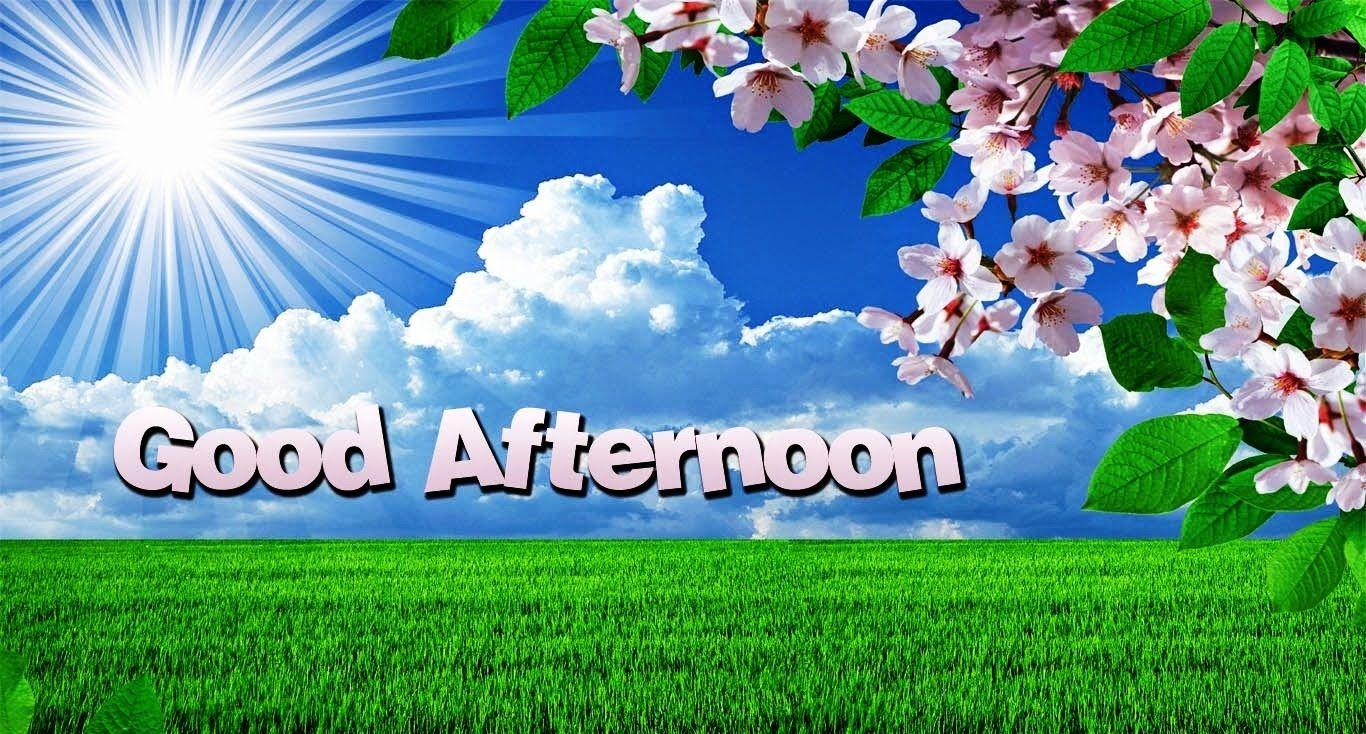 good afternoon wallpapers wallpaper cave