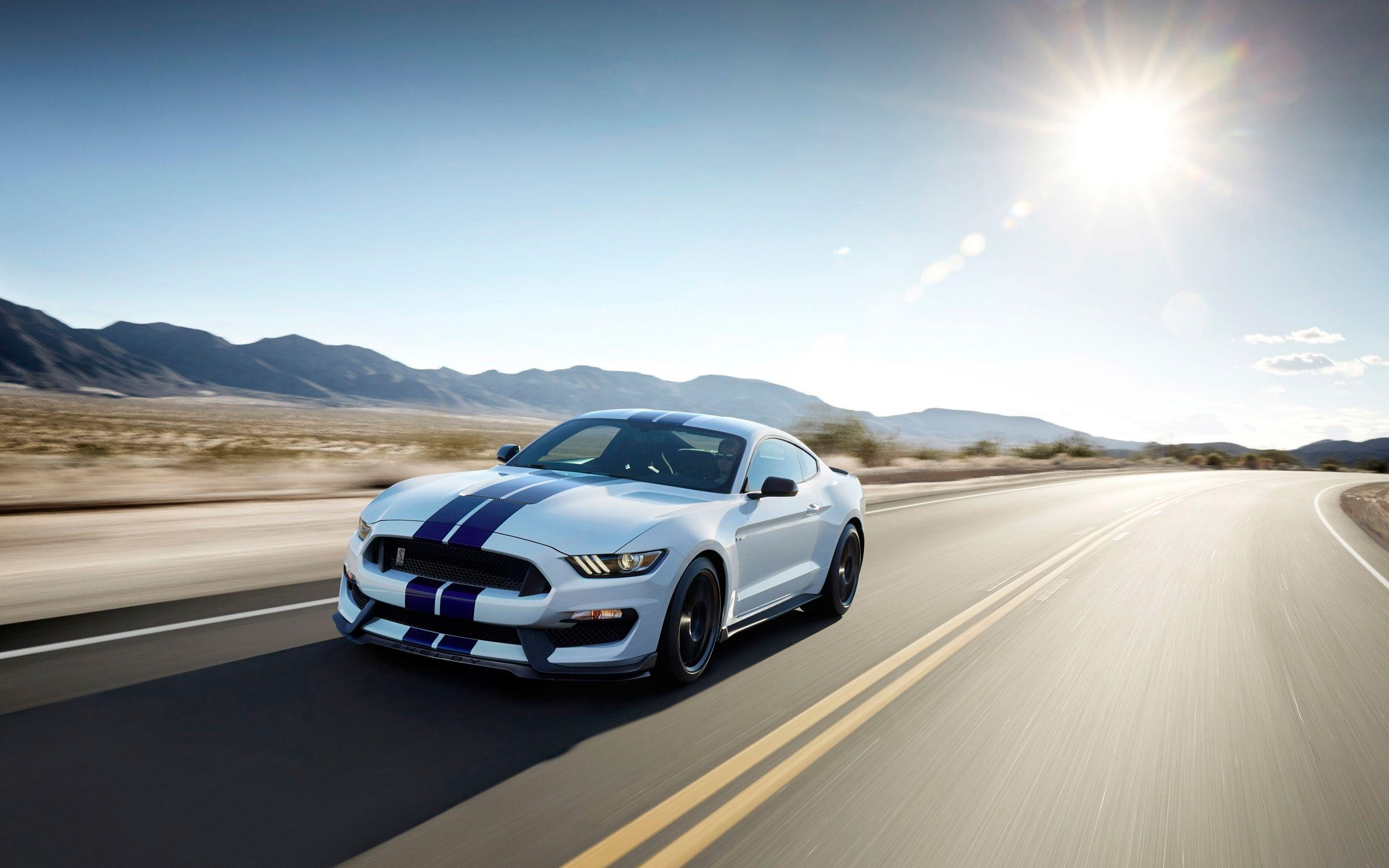 Shelby Ford Mustang GT350 Wallpapers