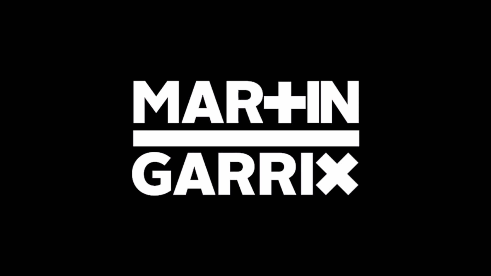 Martin Garrix Third Party