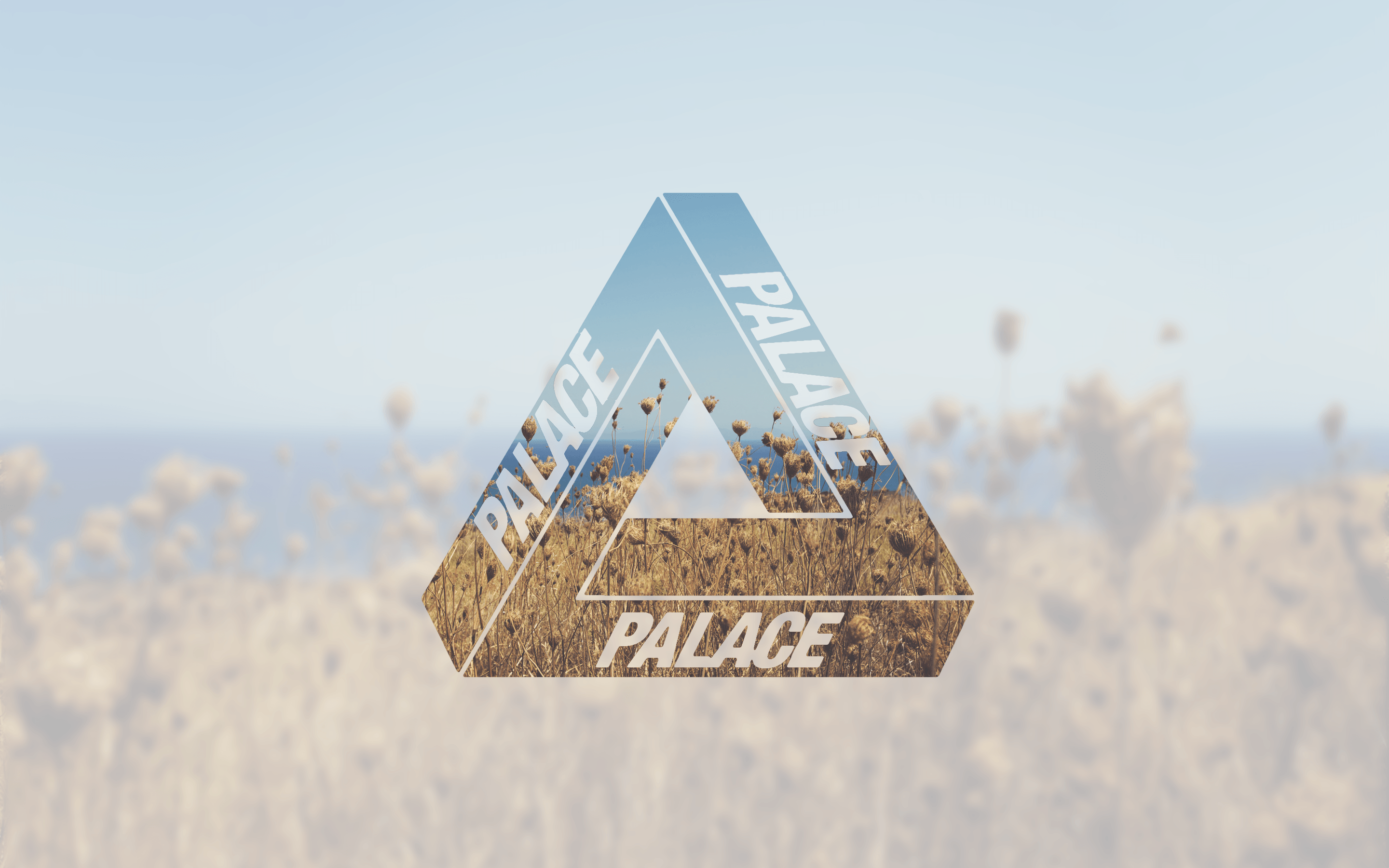 Palace Skateboards Wallpapers Wallpaper Cave