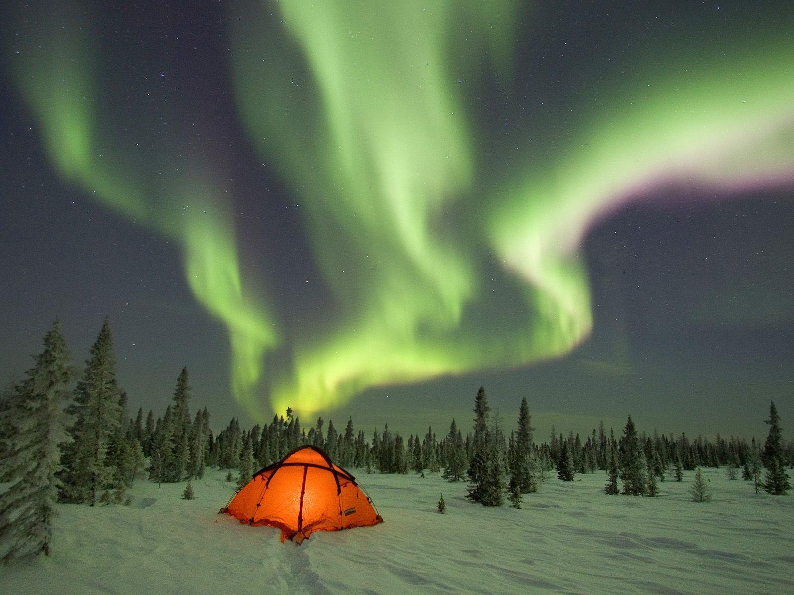 Camping Under The Northern Lights Boreal Forest Canada HD