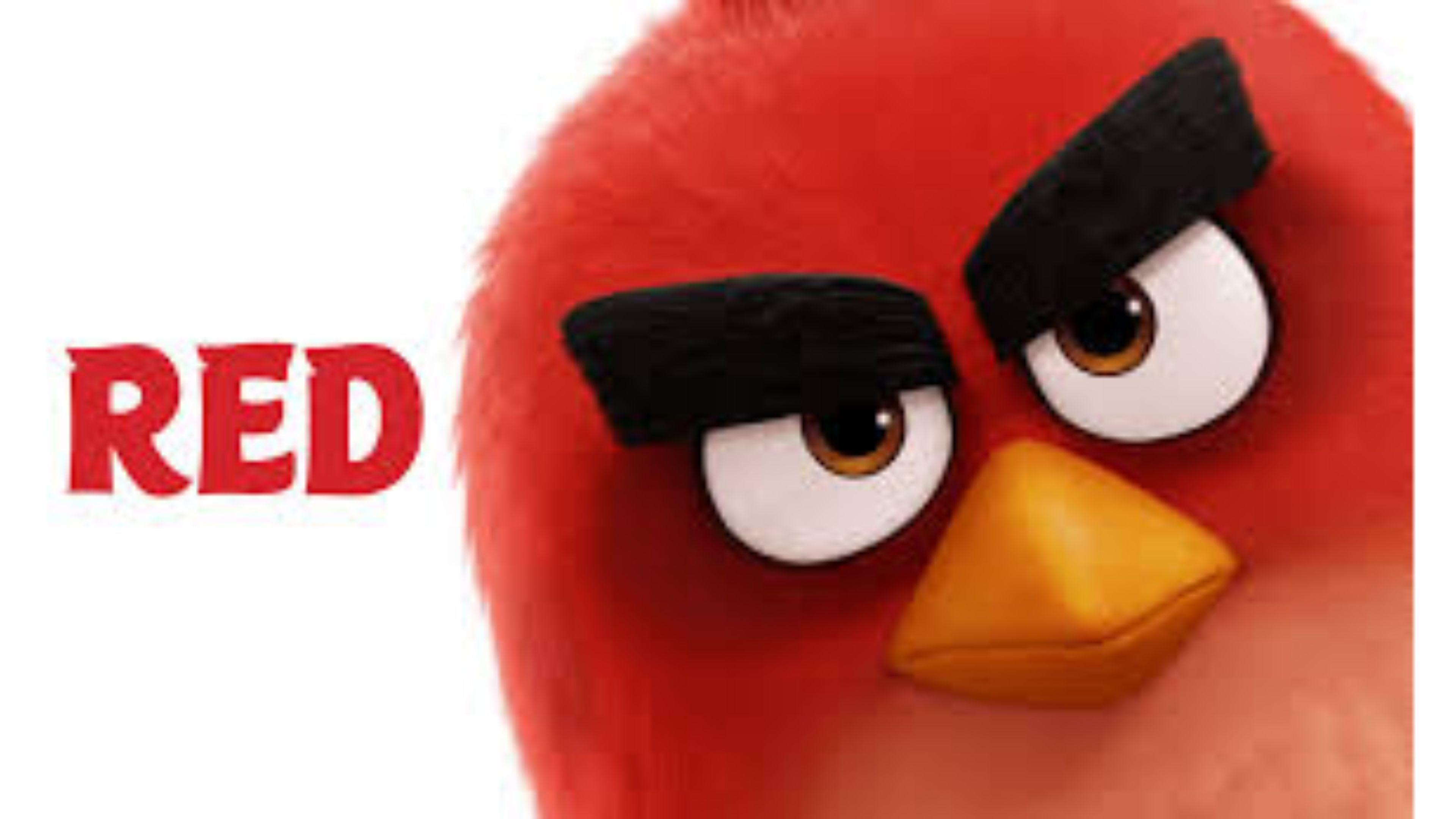 Angry Birds Movie Red Wallpapers Wallpaper Cave