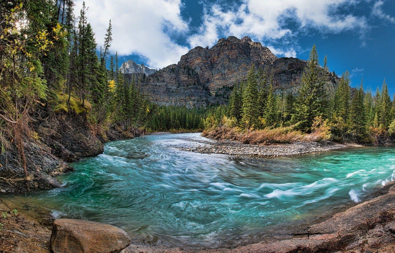 River: Mountain Creek Canada Forest River Banff National Park Water