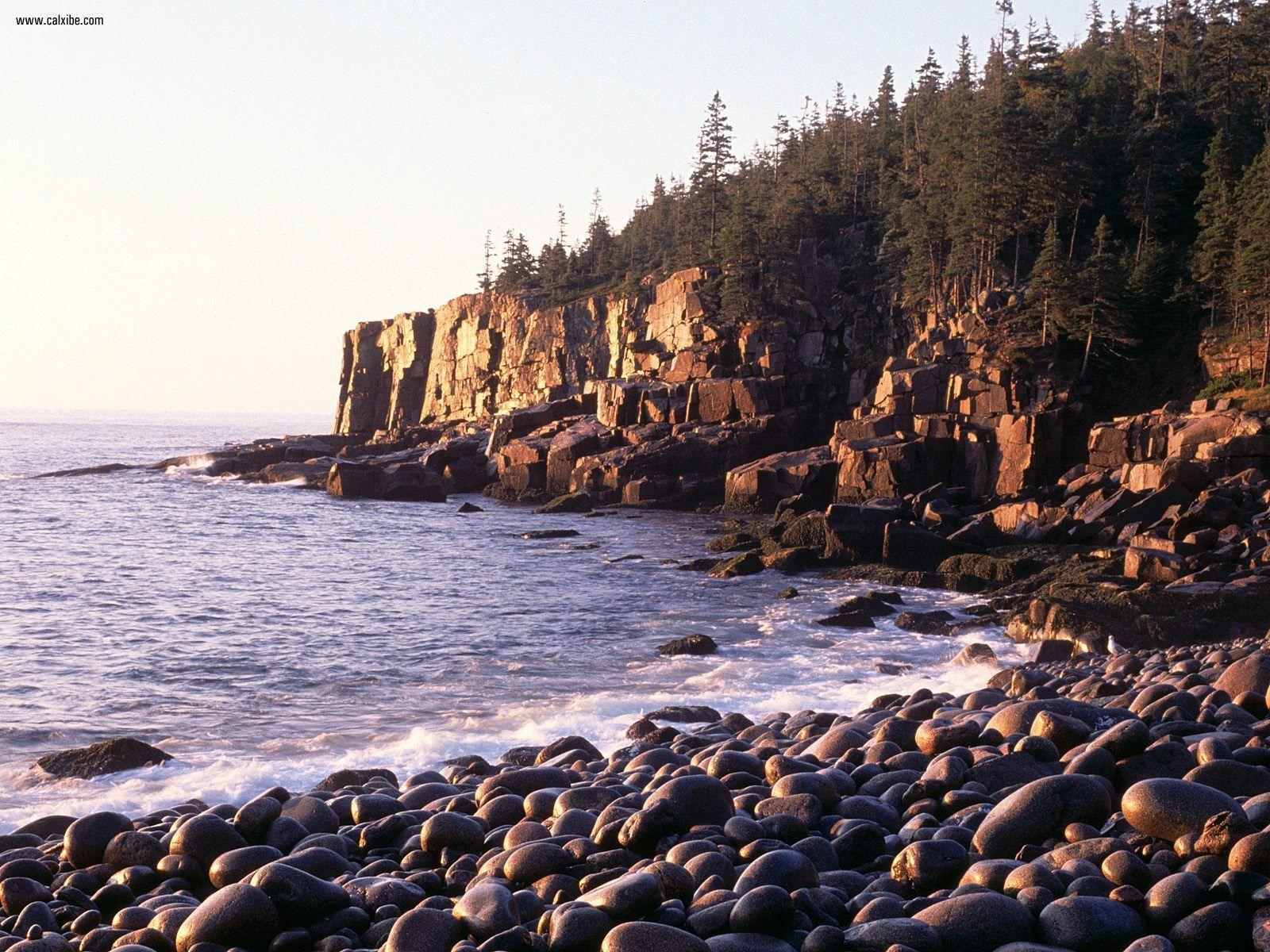 Nature: Sunrise At Otter Cliffs Acadia National Park Maine