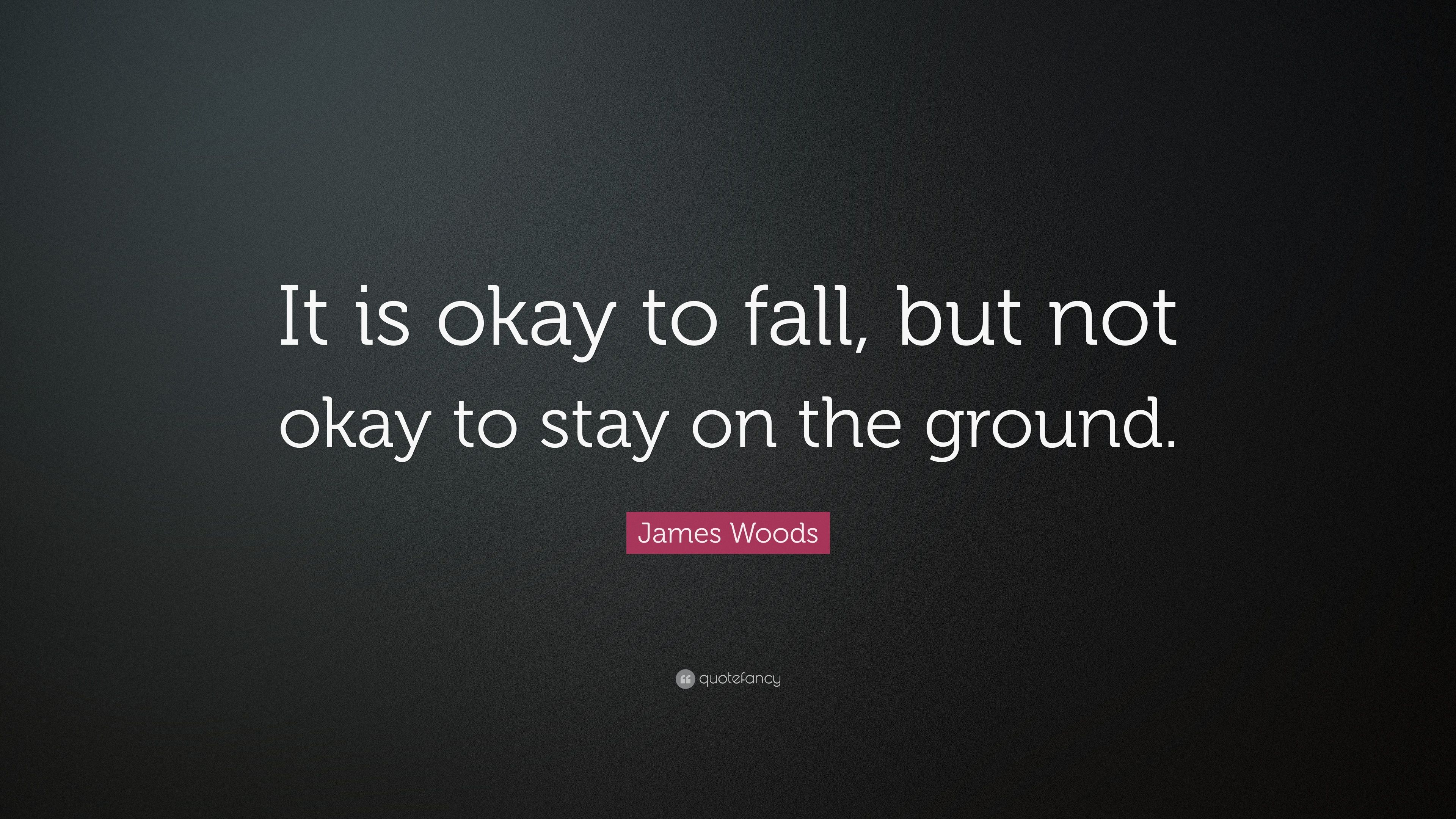 "James Woods Quote: ""It is okay to fall, but not okay to stay on ..."