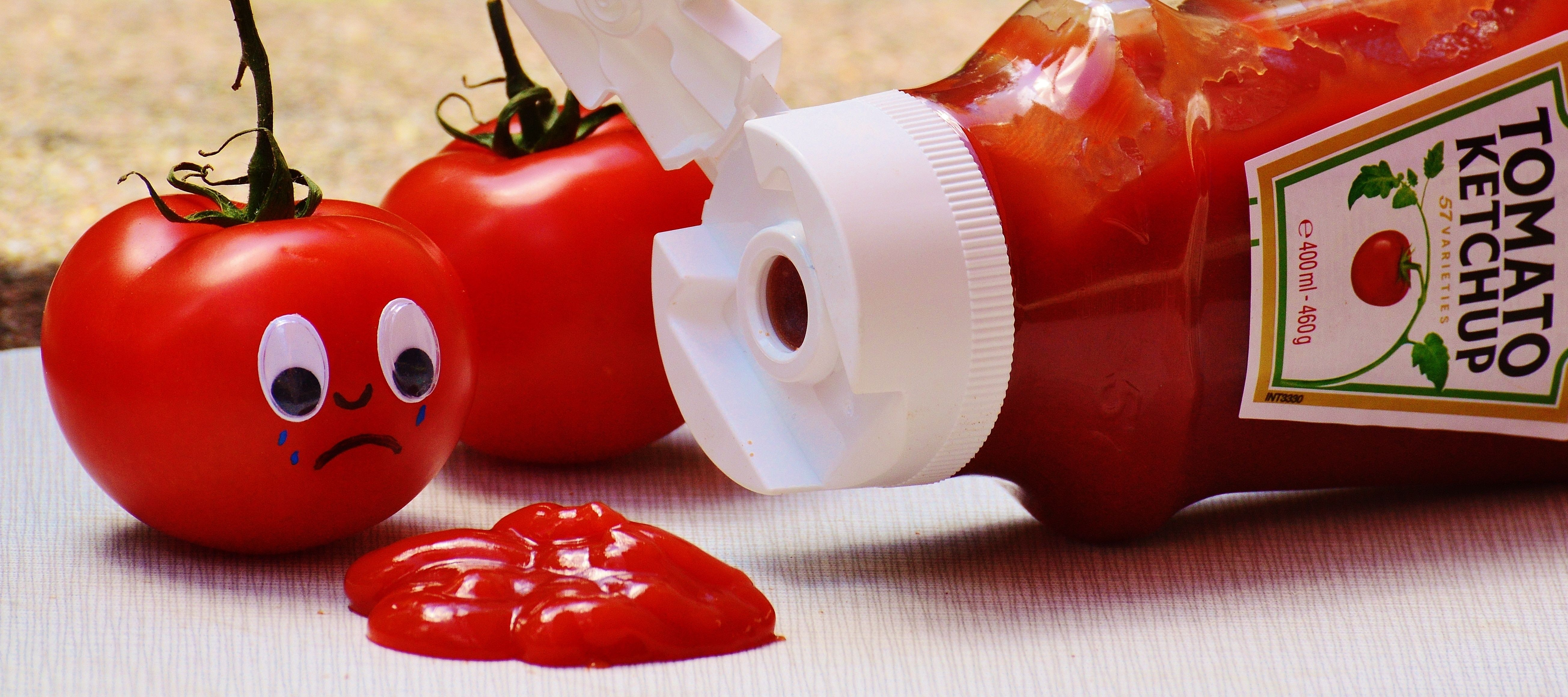 a picture of white and red tomato ketchup bottle and two tomatoes ...
